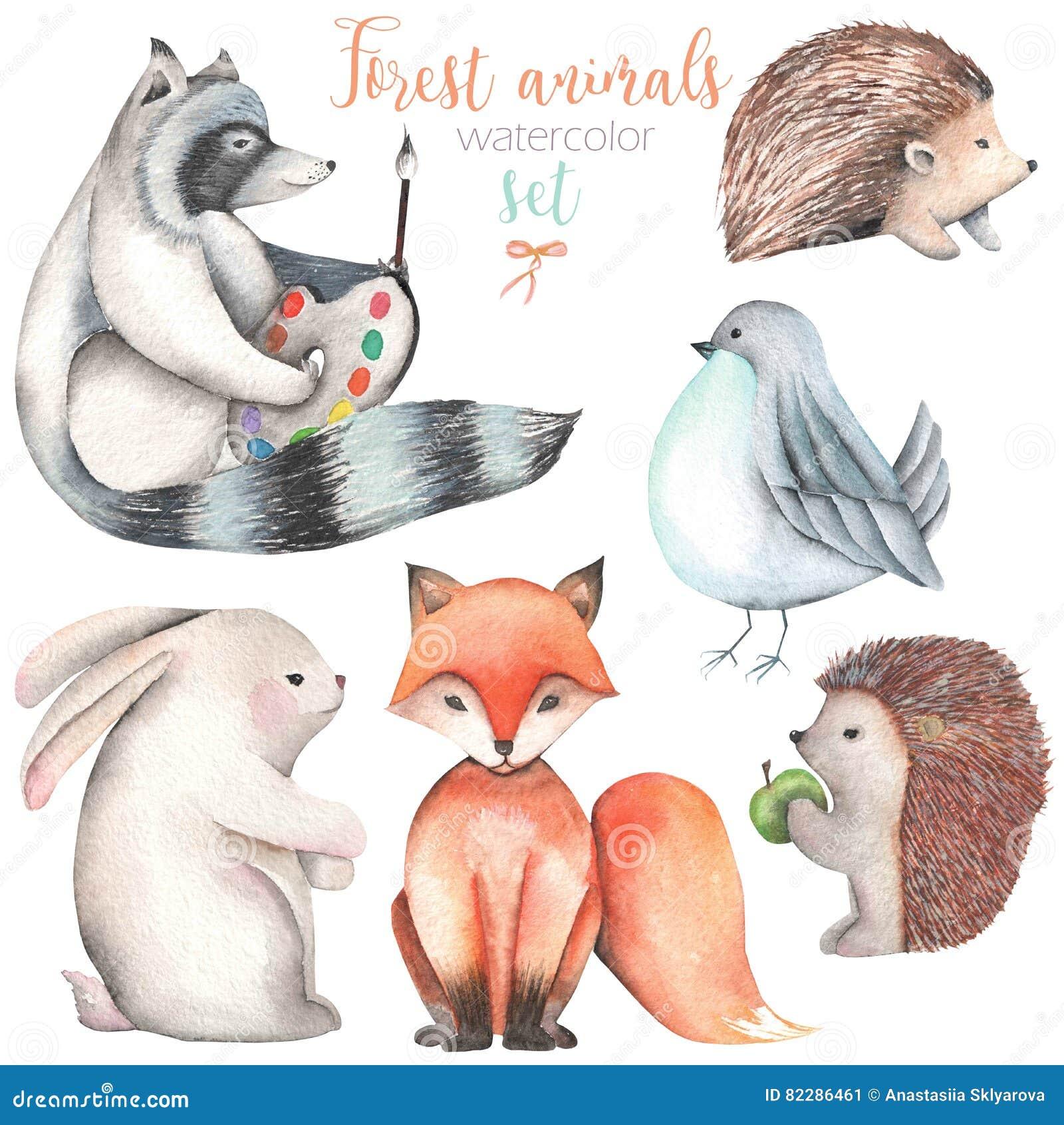 Kolekcja, set akwareli zwierząt śliczne lasowe ilustracje