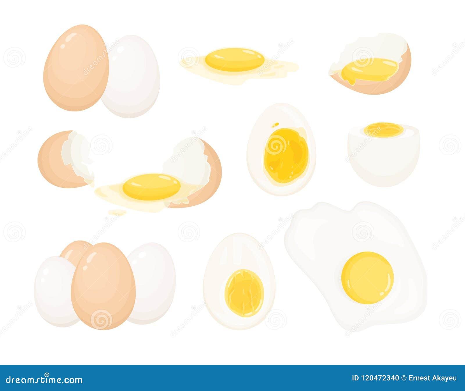 Kolekcja surowi, gotowani i smażący jajka, strugający i zakrywający z eggshell Plik wyśmienicie proteiny jedzenie