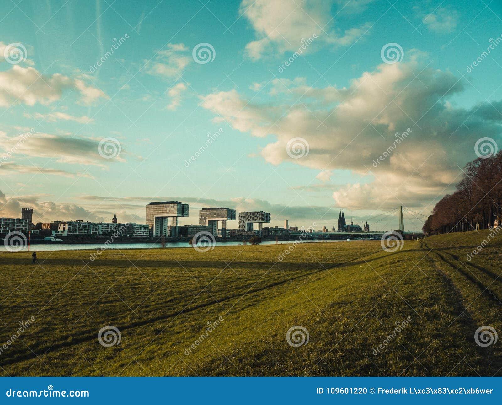 Koloński pejzaż miejski z Kolońską katedrą, Rheinauhafen i żurawiem,