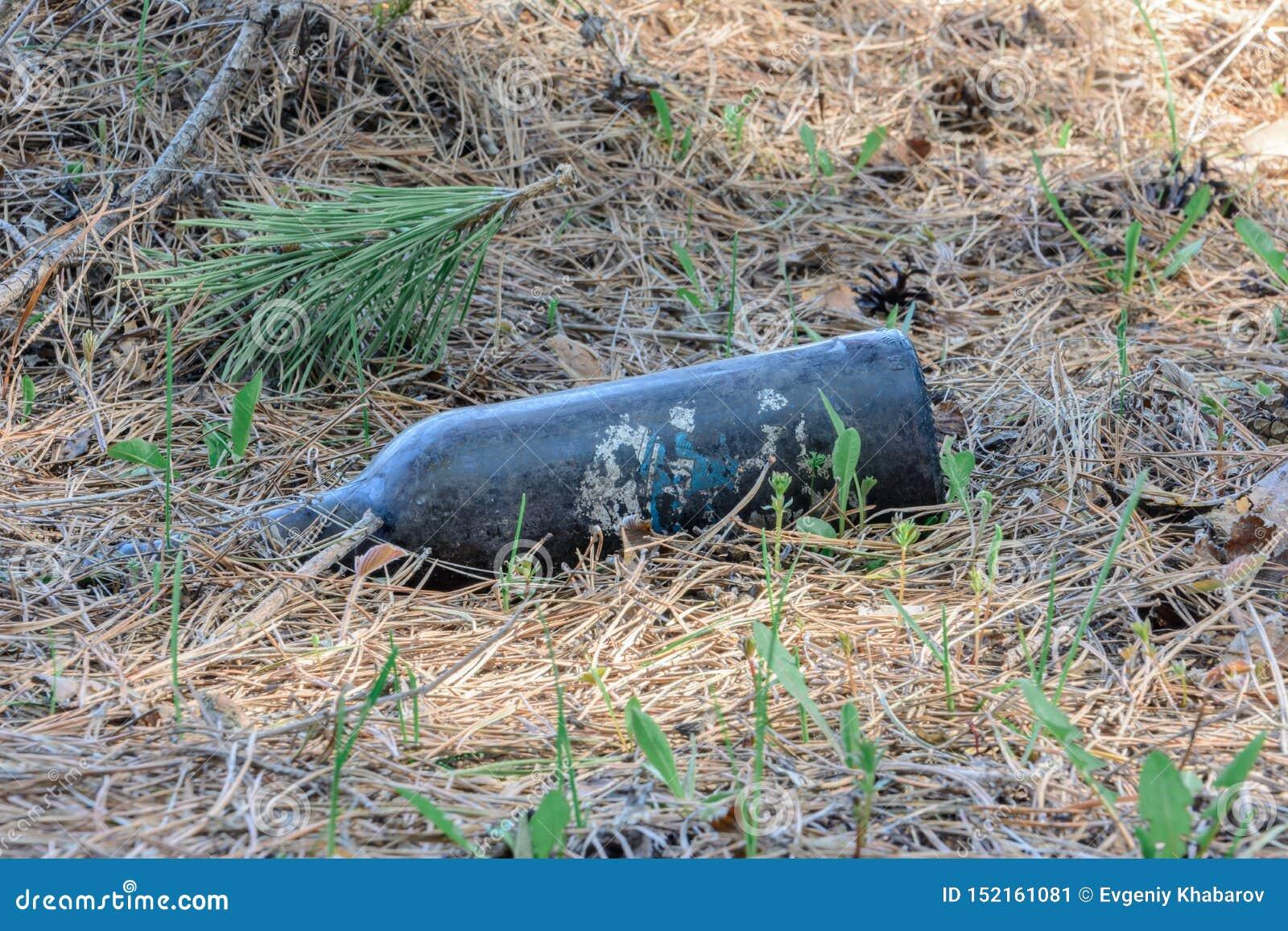 ?kologisches Krisenfoto Leute ließen Rückstand in den wild lebenden Tieren Müllkippe auf dem Gras nahe dem Waldverschmutzungsnatu