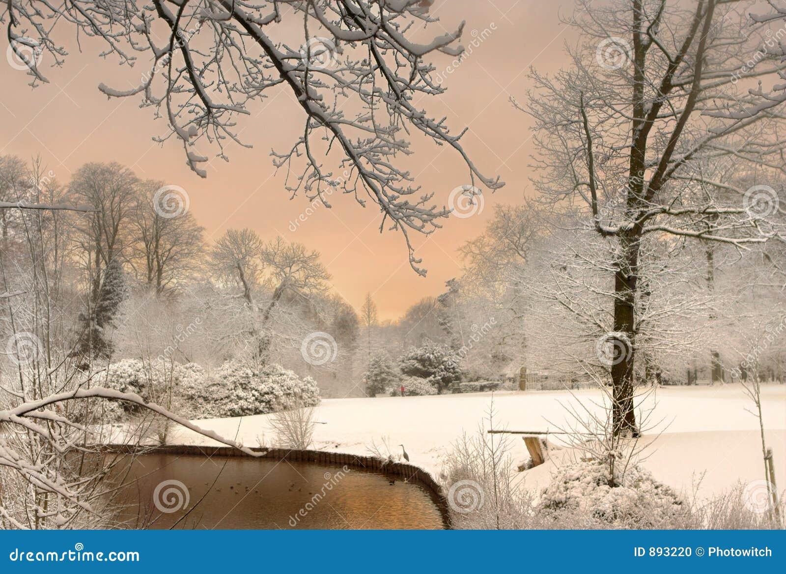 Kolor śnieg
