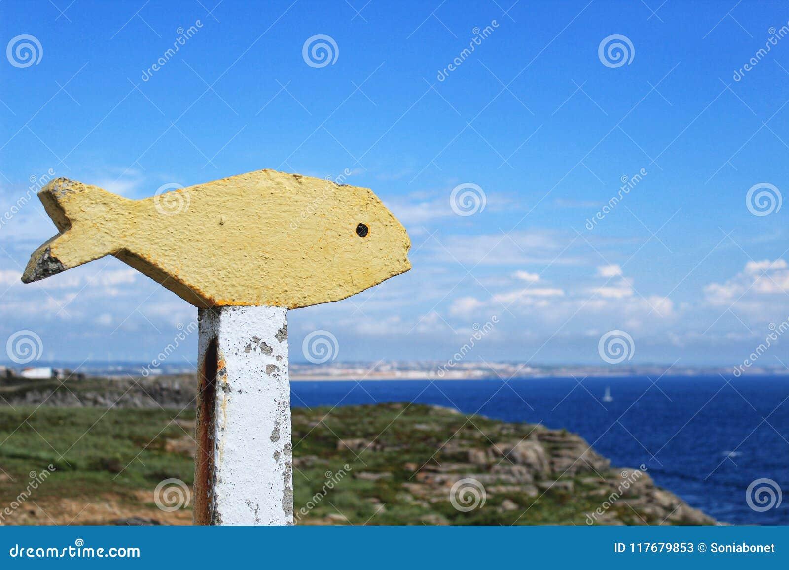 Kolorowa koloru żółtego kamienia ryba w punkcie widzenia w Peniche