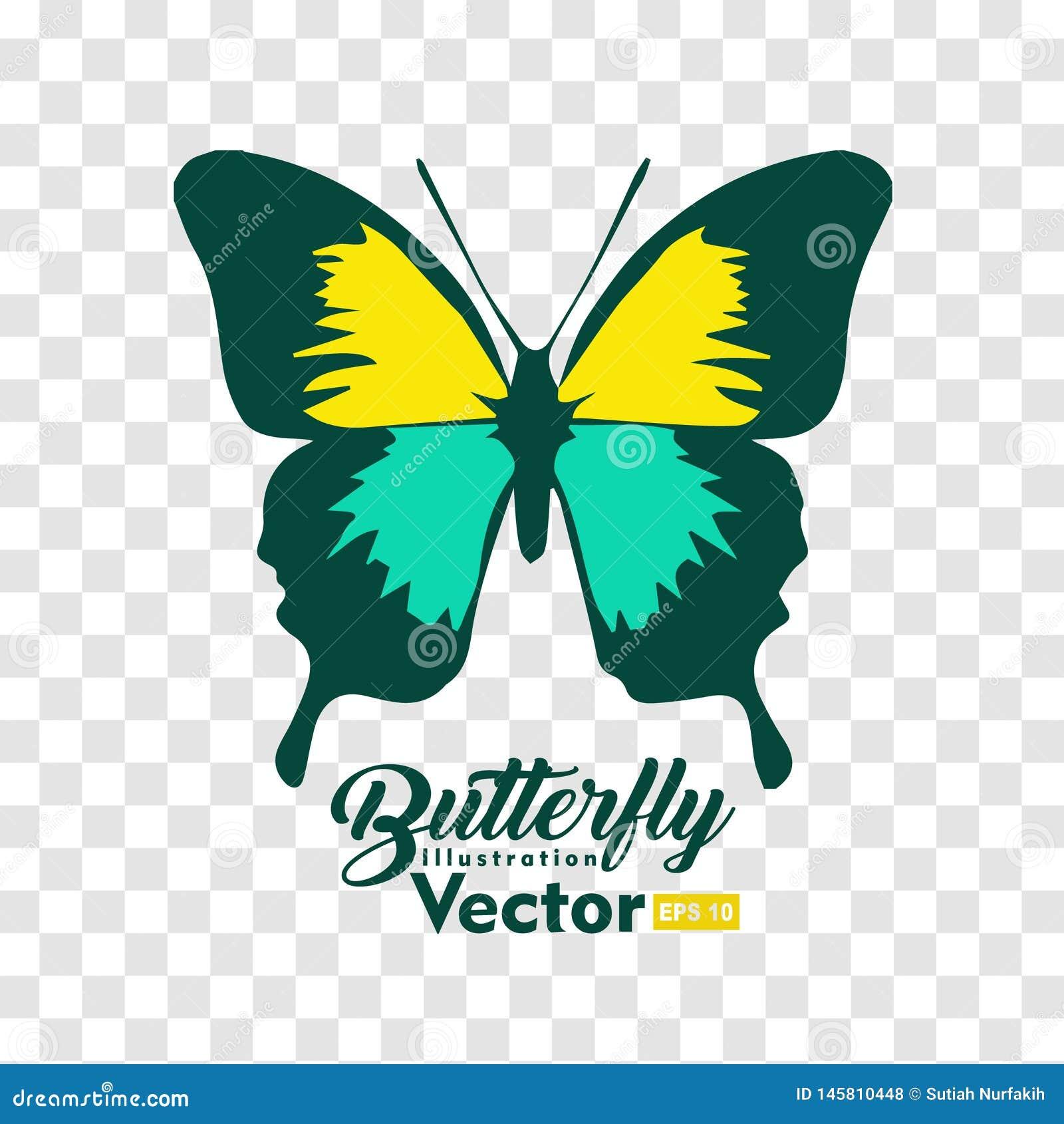 Kolorowa Motylia ilustracyjna wektorowa kolekcja