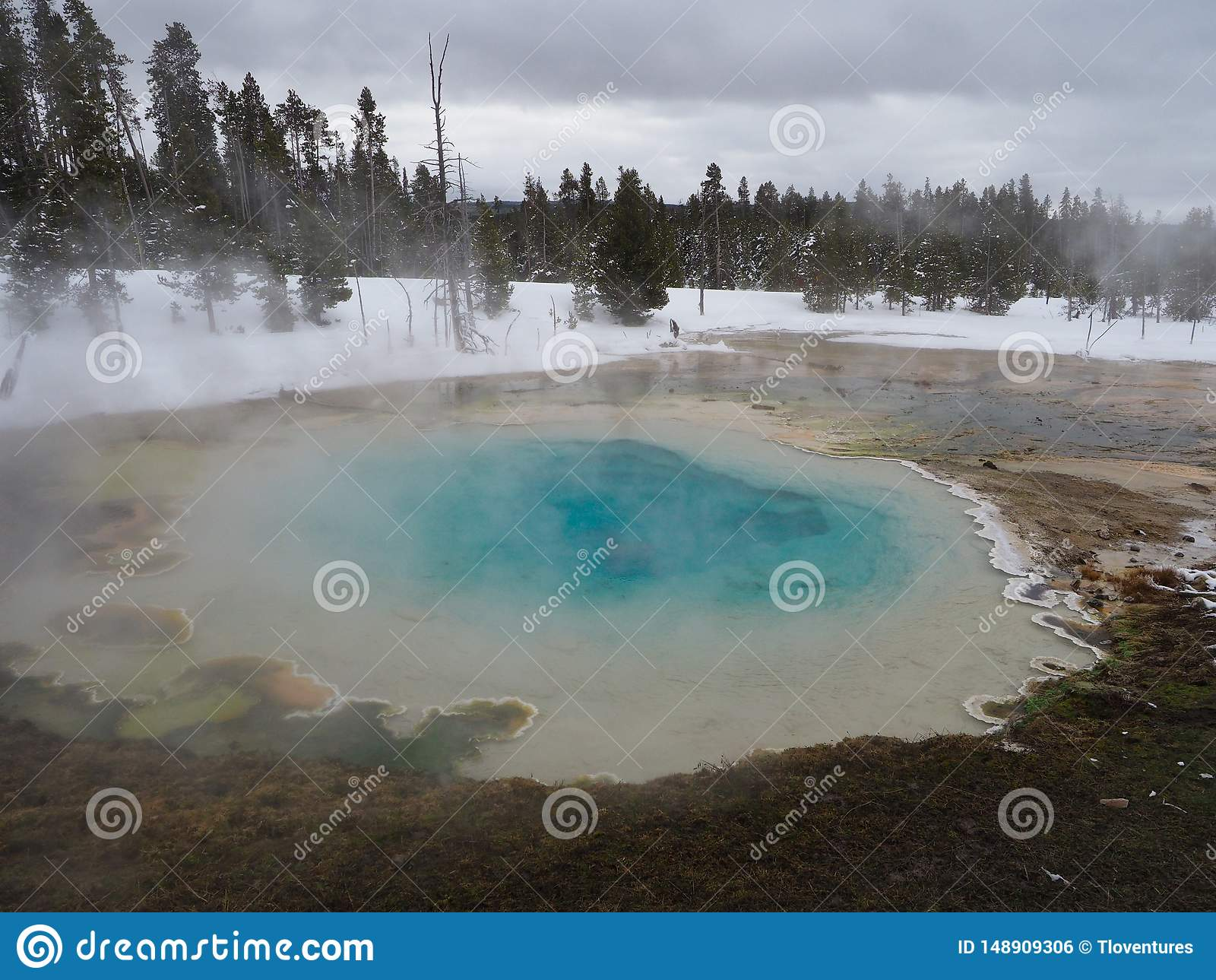 Kolorowa Silex wiosna w Niskim gejzeru basenie Yellowstone park narodowy