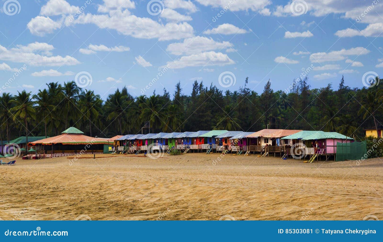 Kolorowe budy w Agonda wyrzucać na brzeg z drzewka palmowego tłem w Goa, India