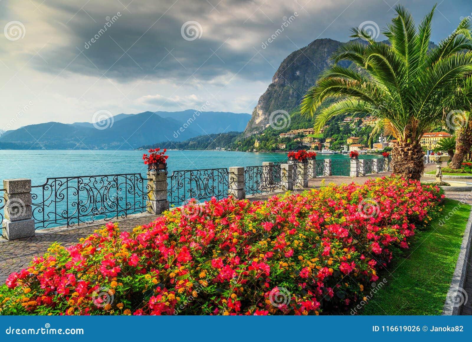 Kolorowi kwiaty i spektakularny park, Jeziorny Como, Lombardy region, Włochy