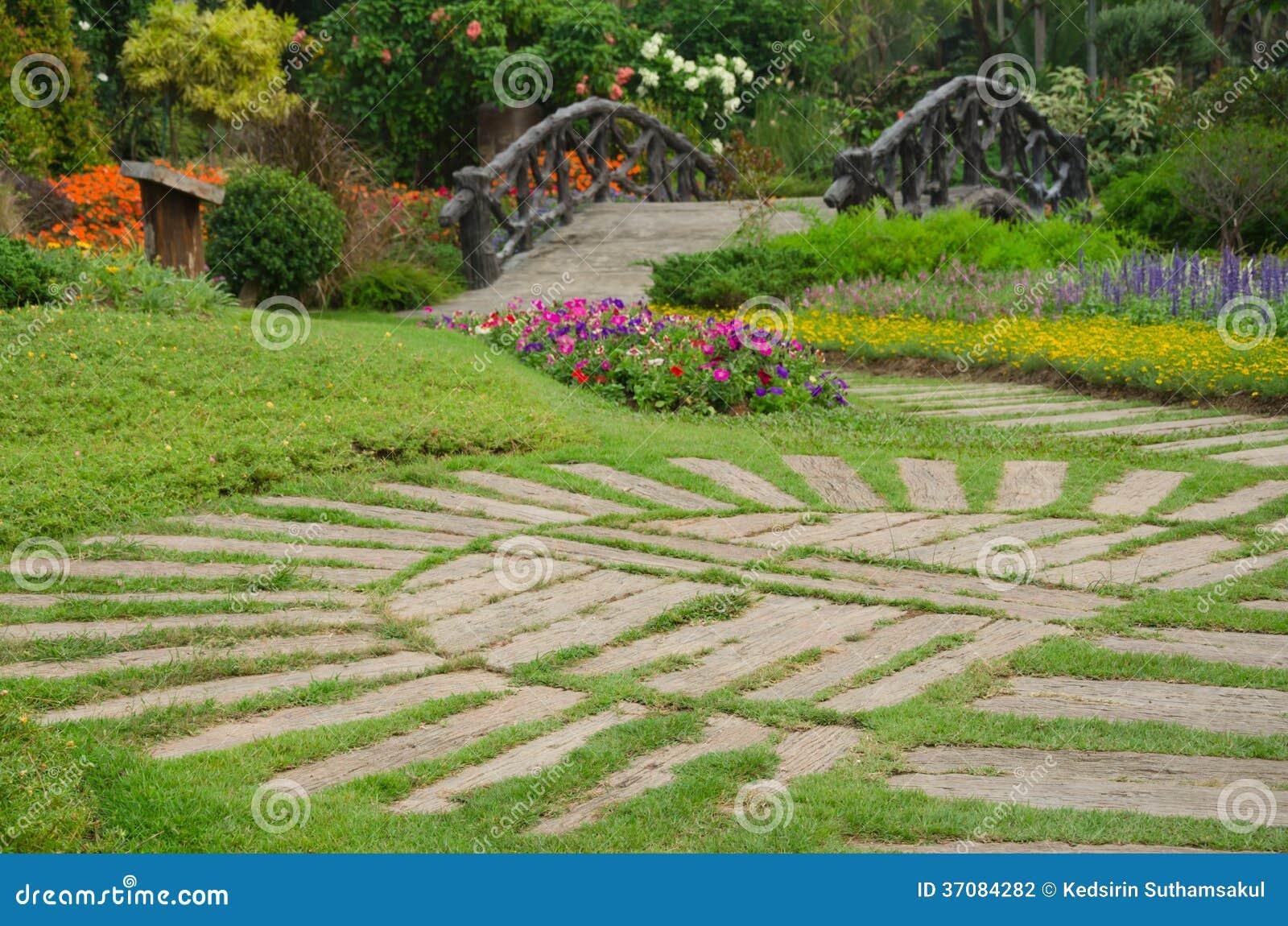 Download Kolorowi Kwiaty W Pięknym Natura Parku, Tajlandia Zdjęcie Stock - Obraz złożonej z przyrost, tło: 37084282