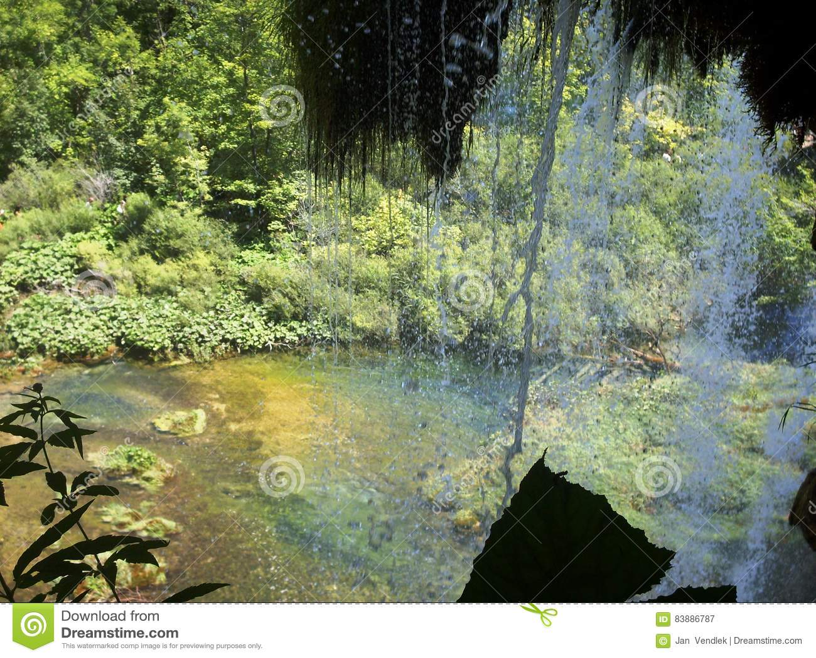 Kolorowy i wibrujący krajobraz jeziorny brzeg Spokojny krajobrazowy pożytecznie jako tło Niski jezioro jar Plitvice jeziora krajo