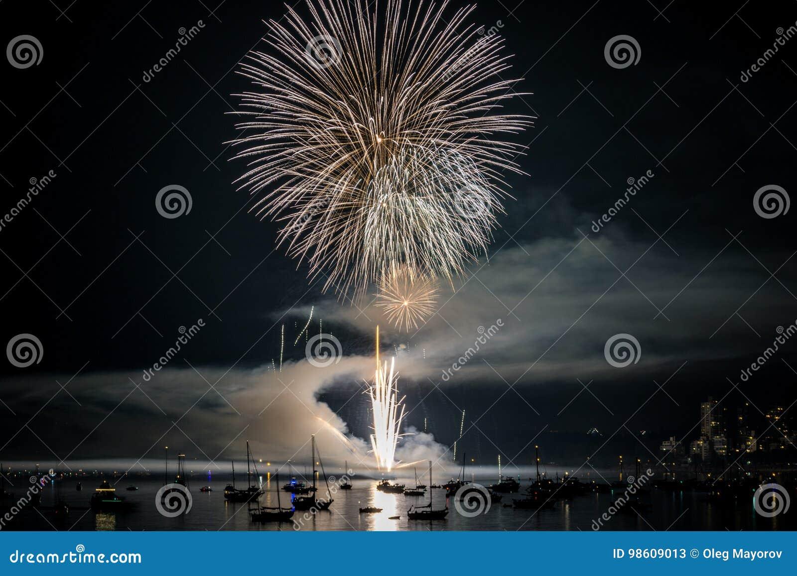 Kolorowy jaskrawy fajerwerk przy nocą przy lato czasem