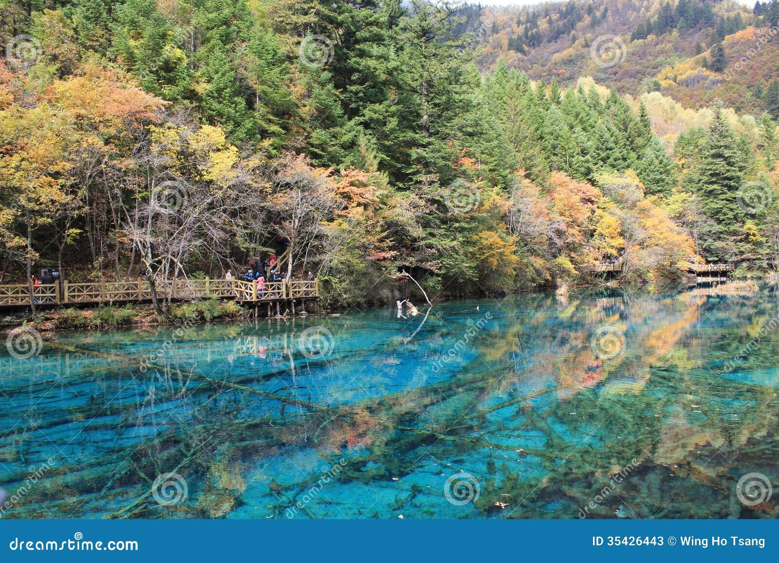 Kolorowy jezioro w Jiuzhaigou