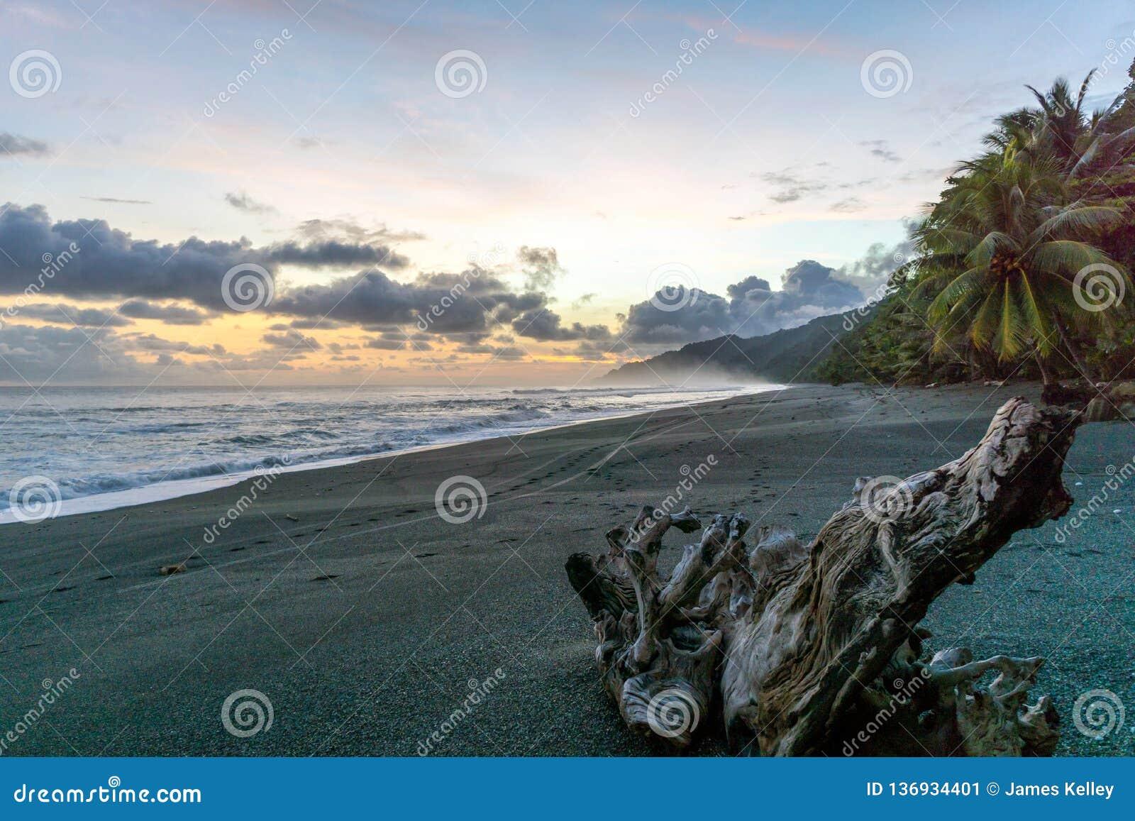 Kolorowy Plażowy zmierzch przy Corcovado parkiem narodowym, Costa Rica