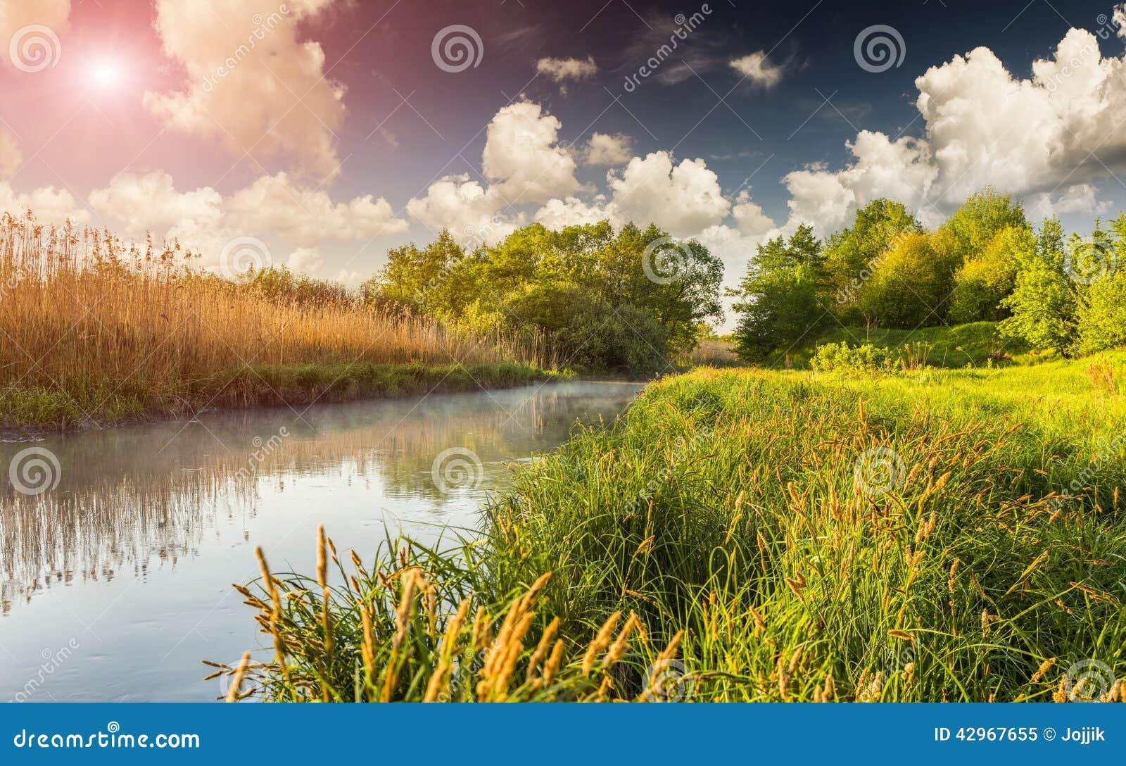 Kolorowy wiosna krajobraz na mglistej rzece