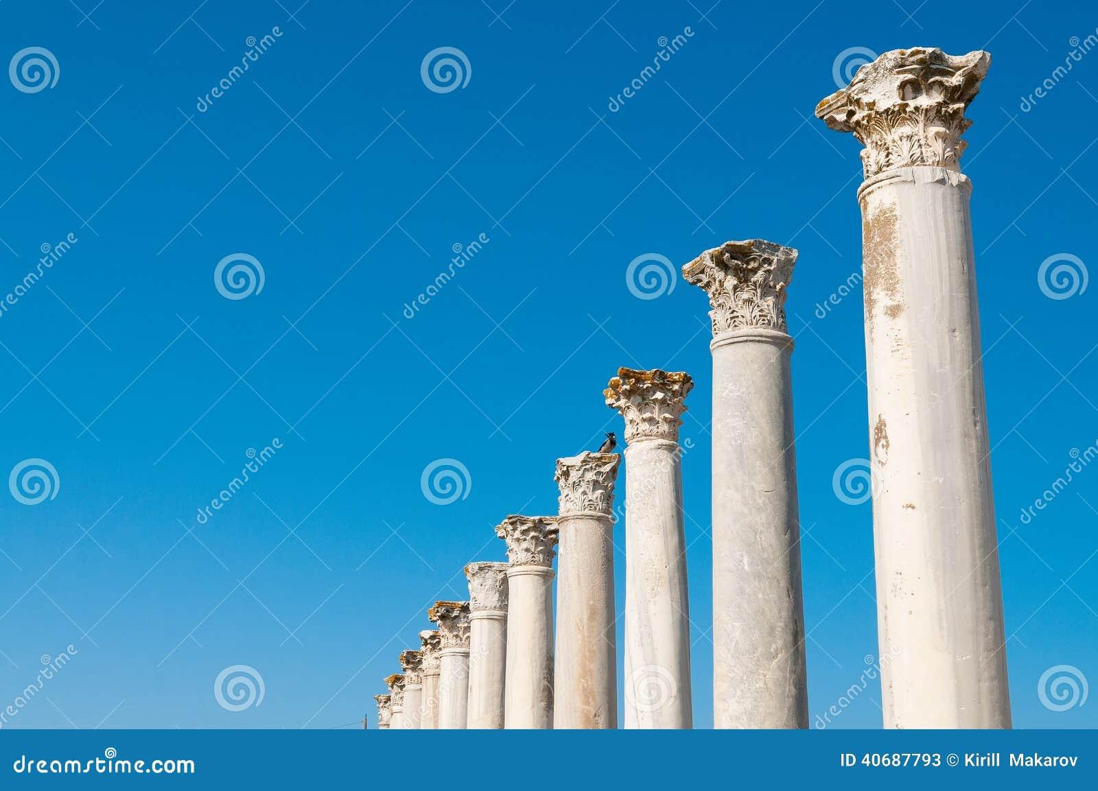 Kolumnada w antycznych ruinach salami miasto Cypr