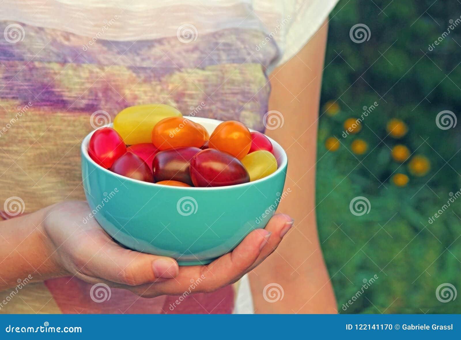 Kom met multi gekleurde die tomaten, door een jonge vrouw worden gehouden
