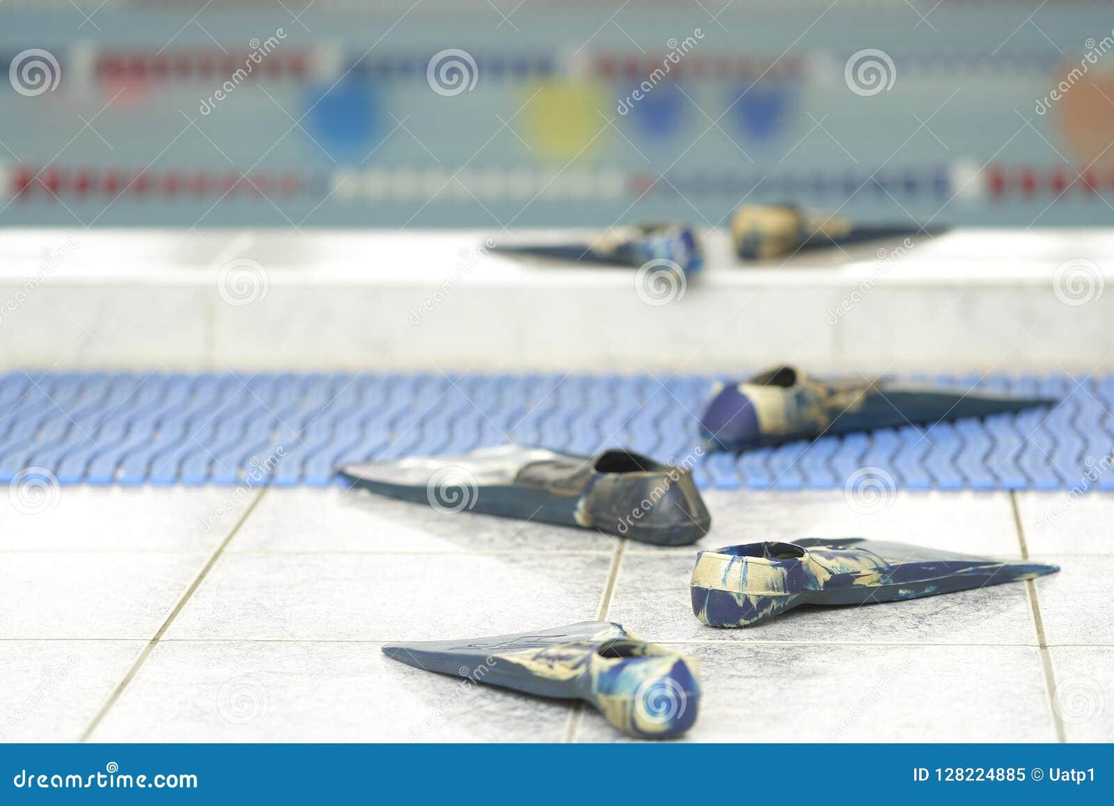 Komiczka ślad od flippers iść woda w basenie