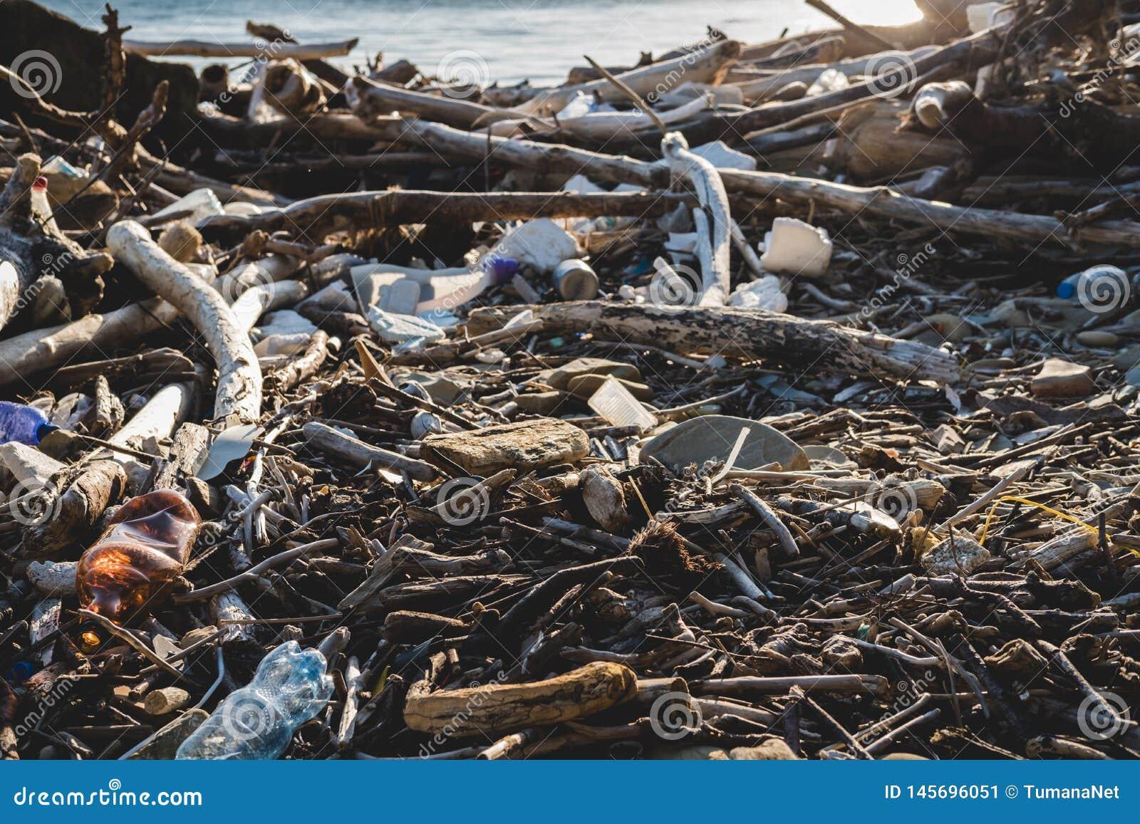 Koncepcja ekologicznego Ekologia problemy planety ziemia Banialuki w miejscach odpoczynek morzem Klingeryt butelki w?r?d