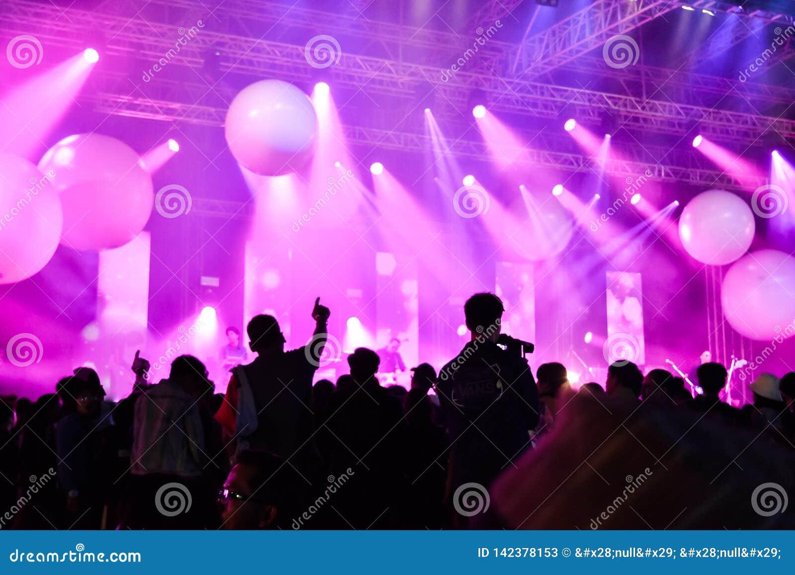 Koncertowy występu festiwalu muzykiego przedstawienie