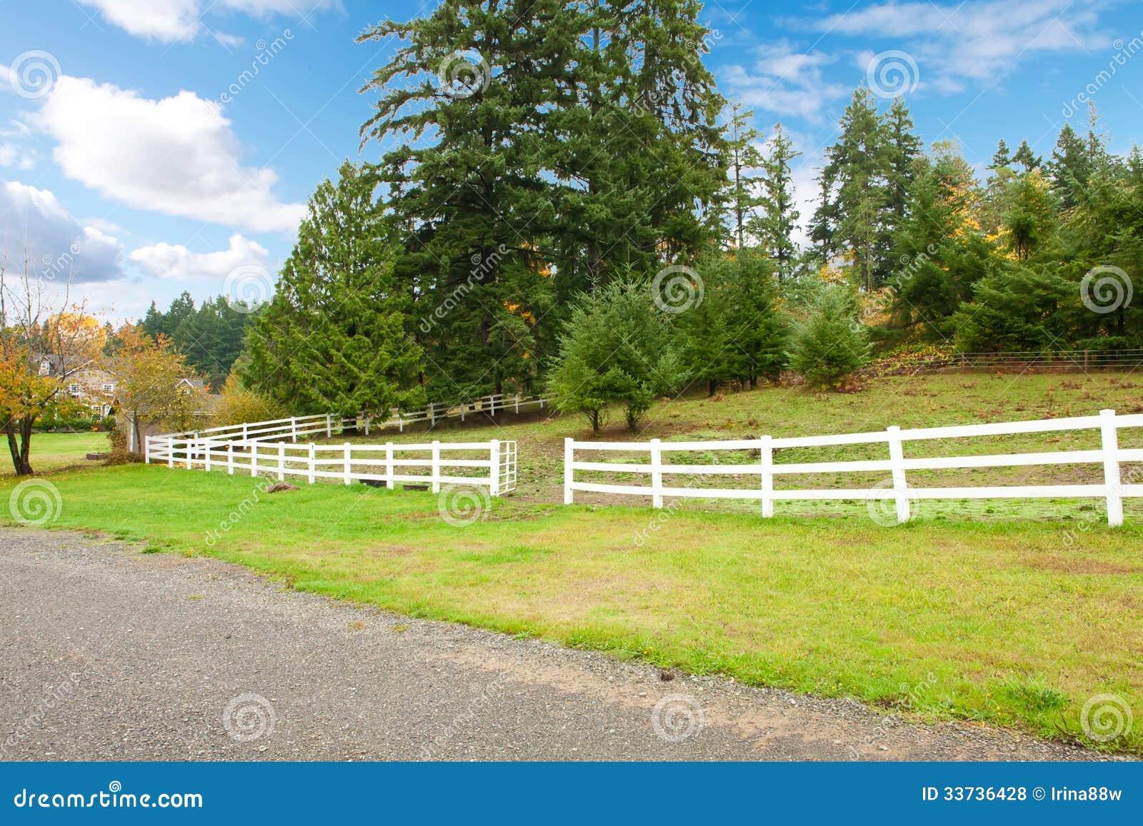 Konia gospodarstwo rolne z bielu ogrodzeniem i spadków kolorowymi liśćmi.
