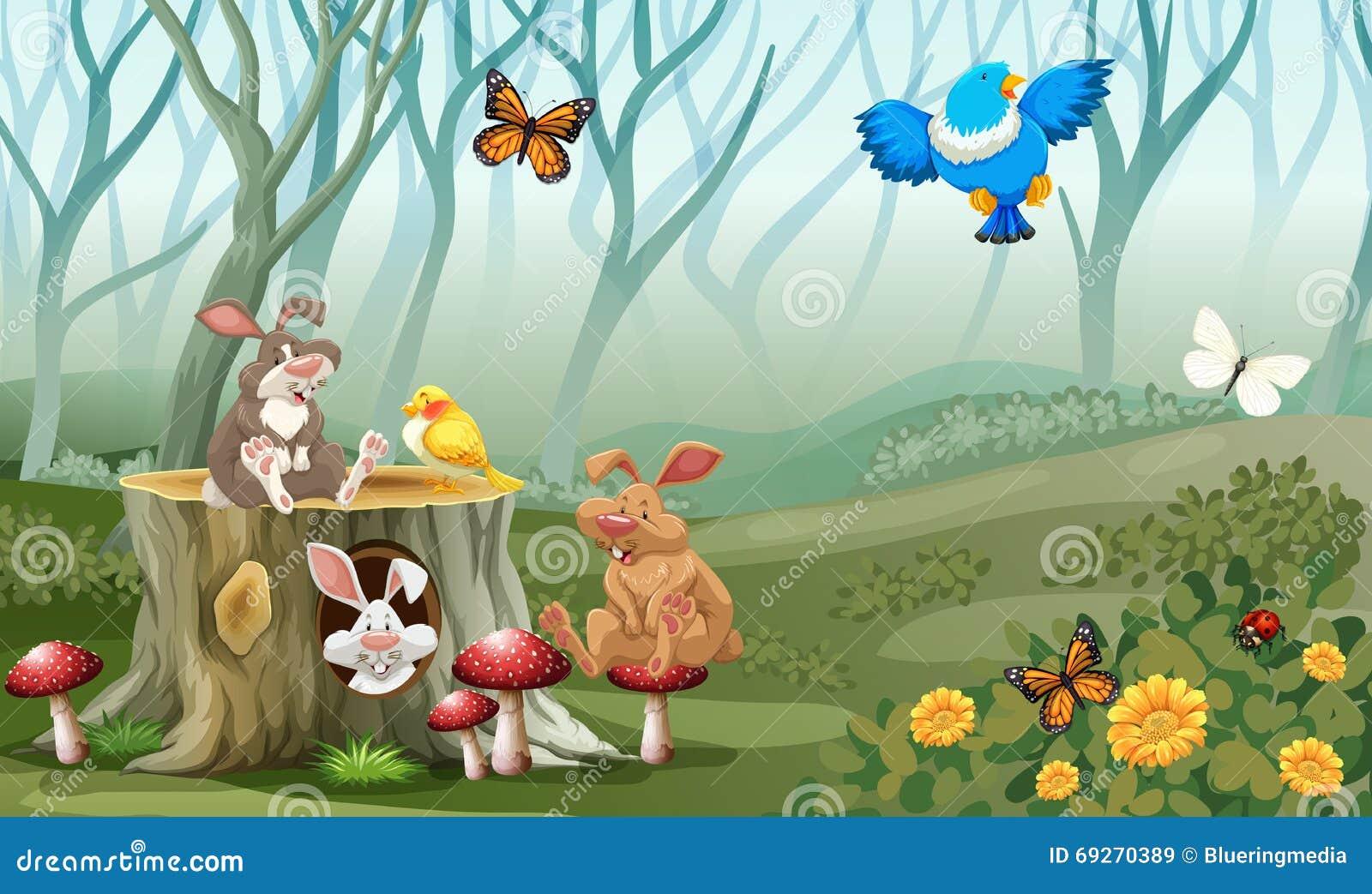 Konijnen en vogels die in het bos leven