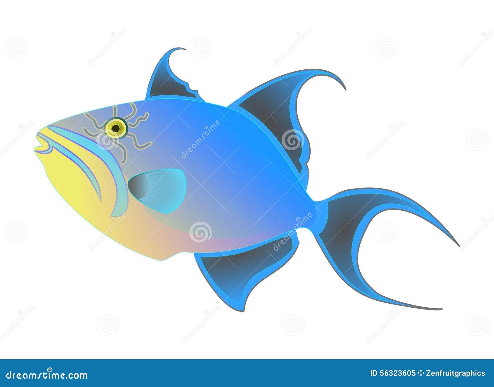 Koningin triggerfish vector Kleurrijke exotische tropische die vissen op witte achtergrond worden geïsoleerd Oceaan dierlijk, gra