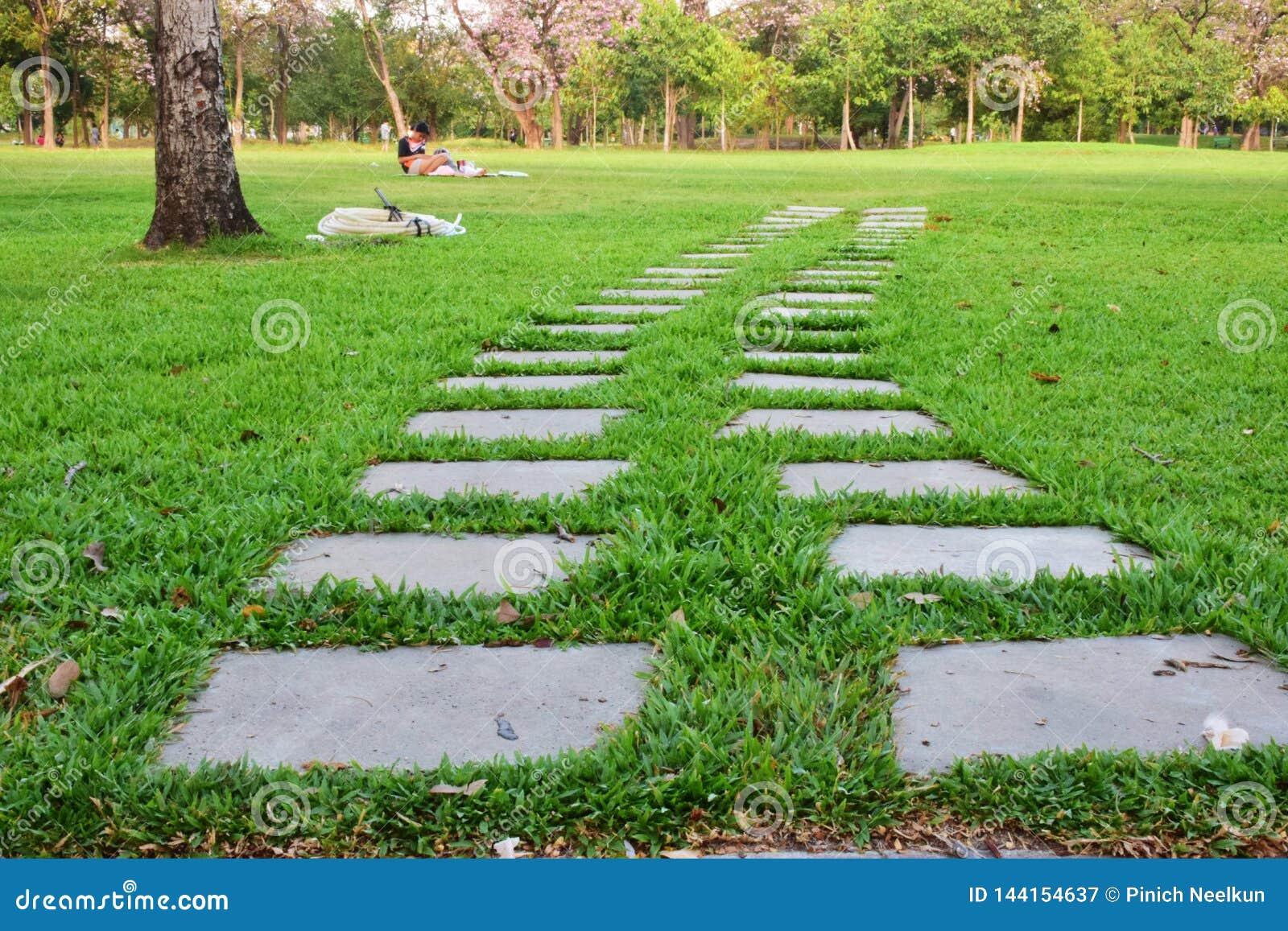 Konkret formbana på gräsmattan