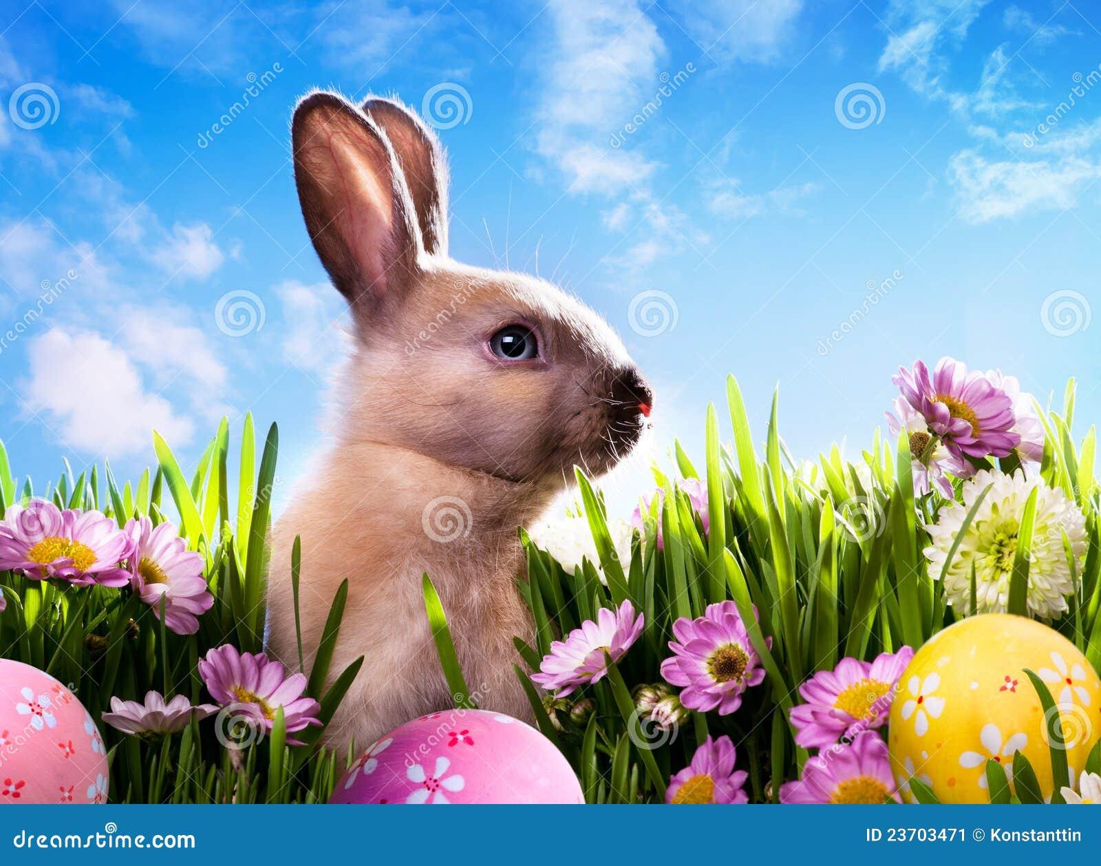 Konst behandla som ett barn fjädern för green för kanineaster gräs