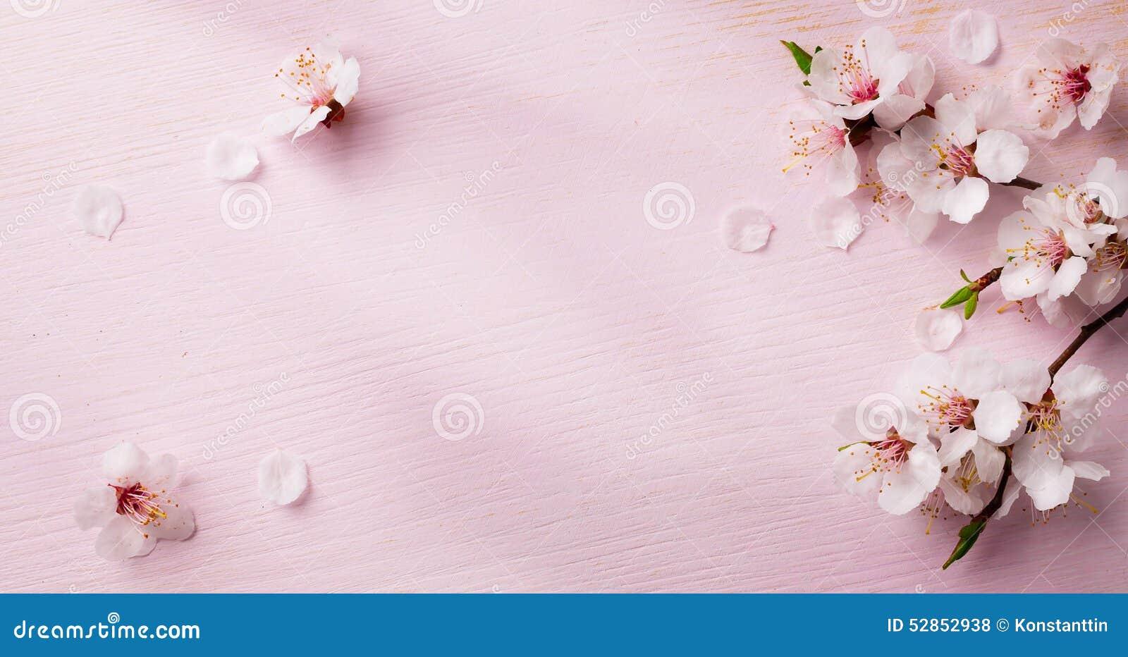 Konst fjädrar blommabakgrund