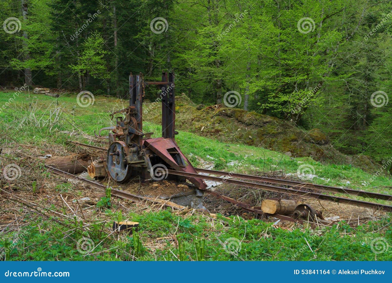 Konstig mekanism i skog