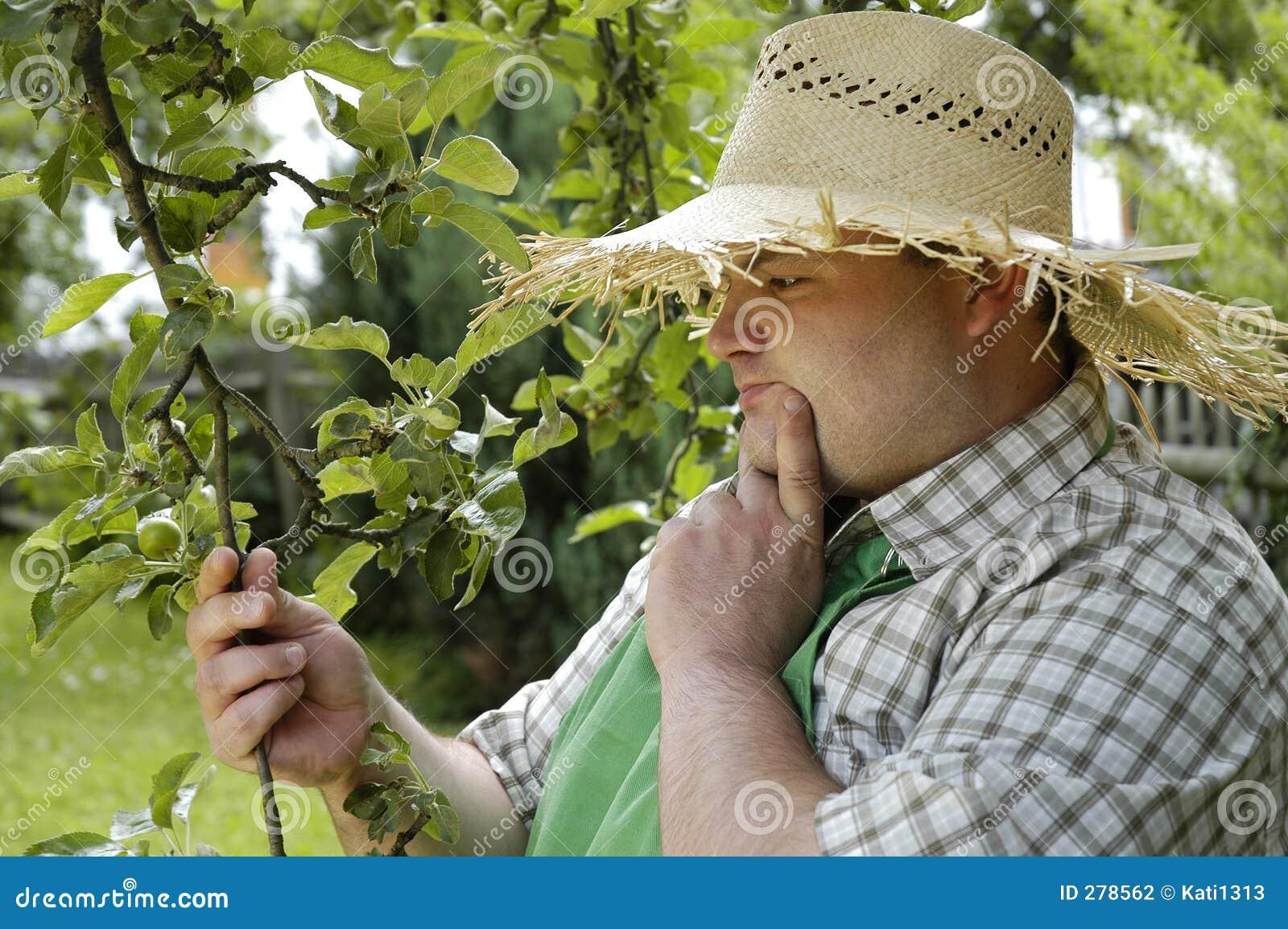 Kontrollera trädgårdsmästaren