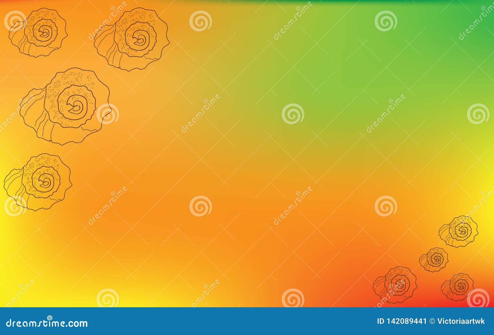 Kontur av snäckskal av olika format på enapelsin bakgrund