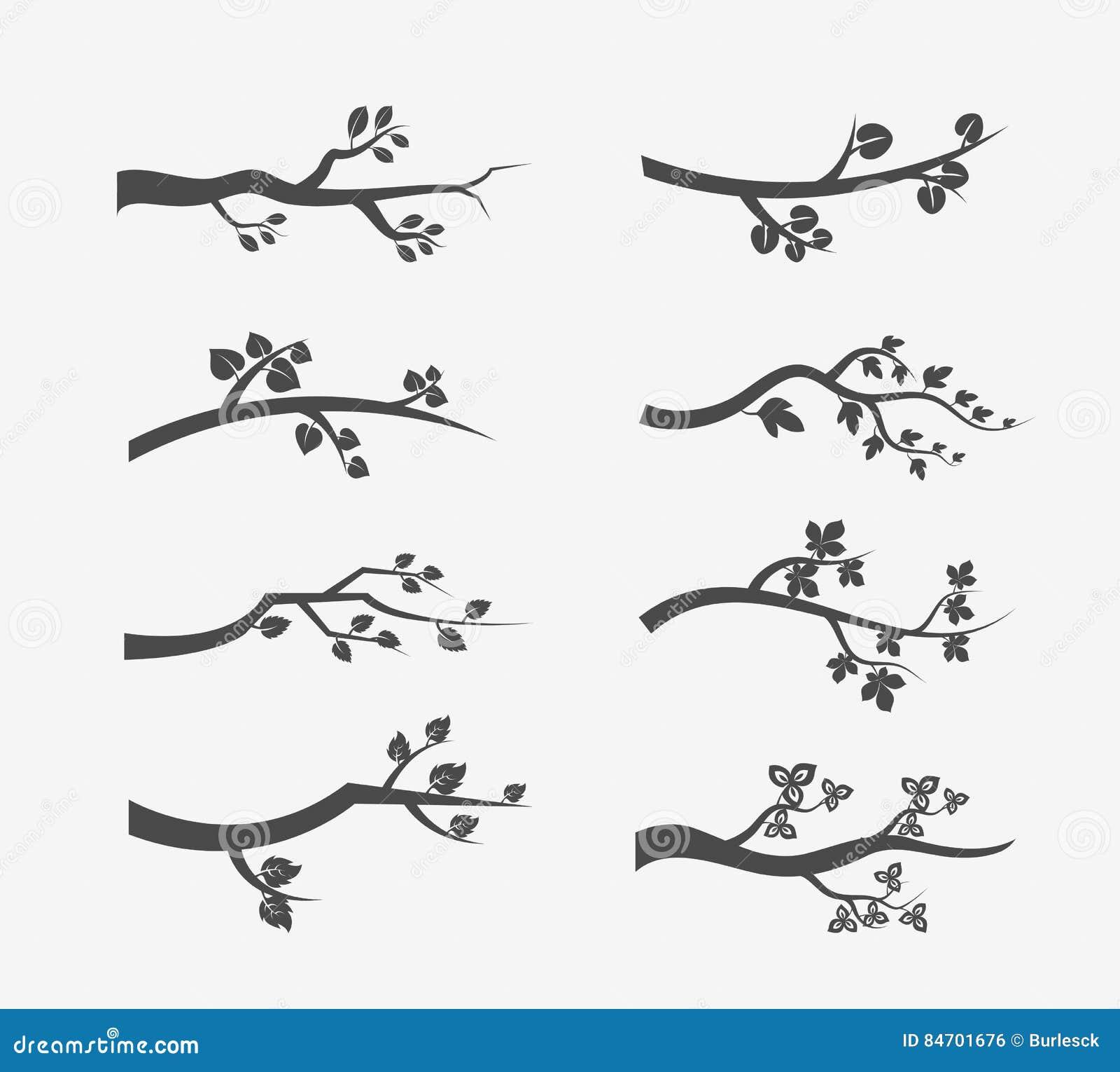 Kontur för vektorträdfilialer med sidor