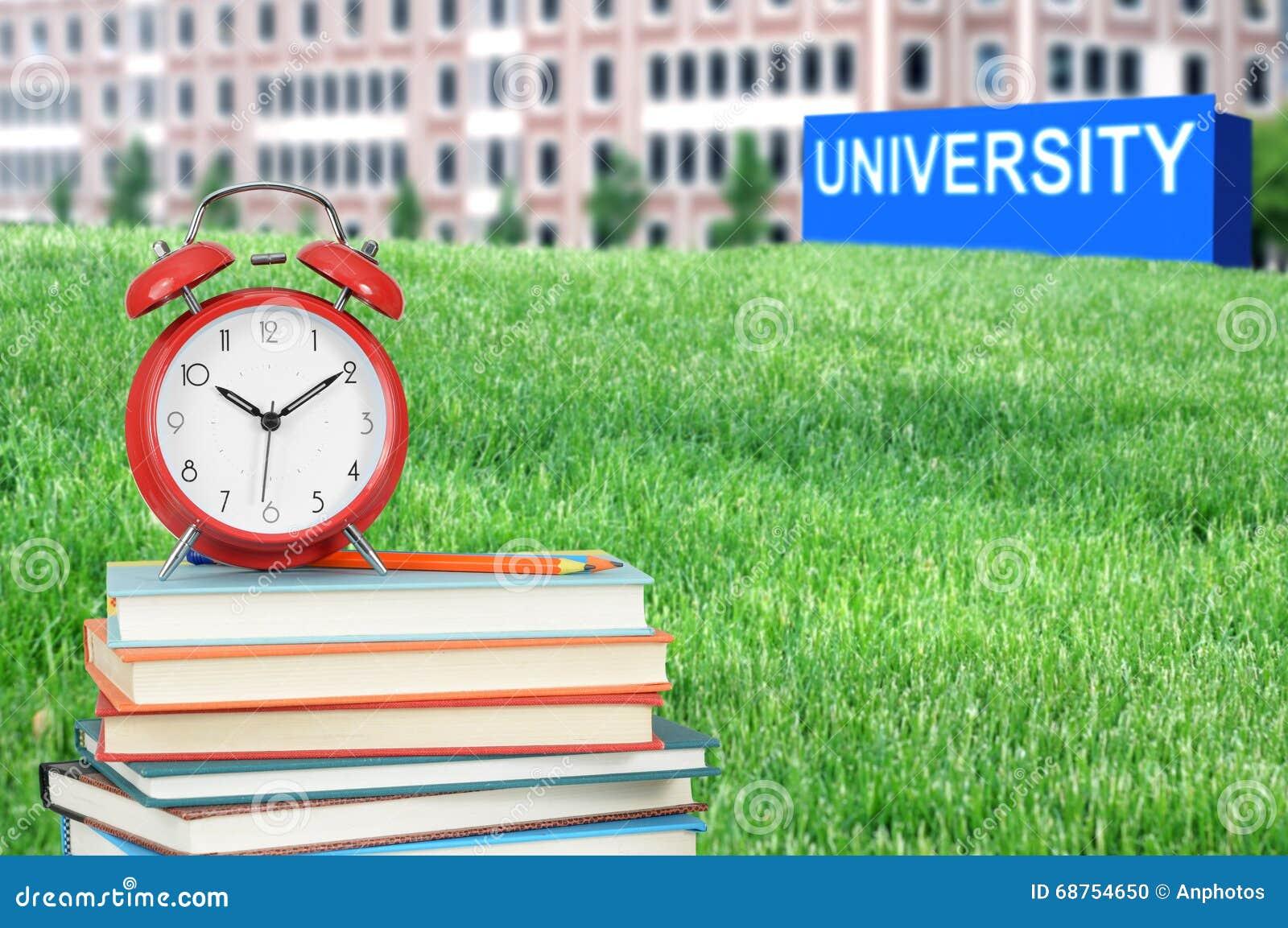 Konzept der Hochschulausbildung
