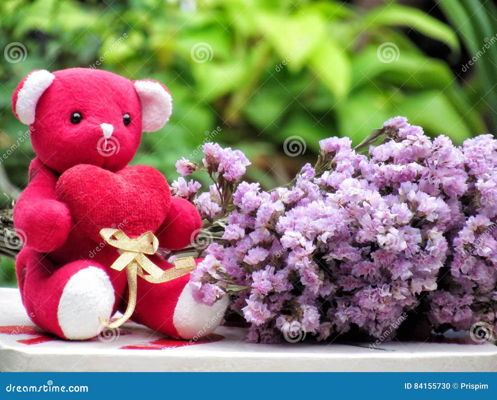 Konzept Für Liebe Am Valentinsgrußtag, Teddybär Sitzen Griff Das ...