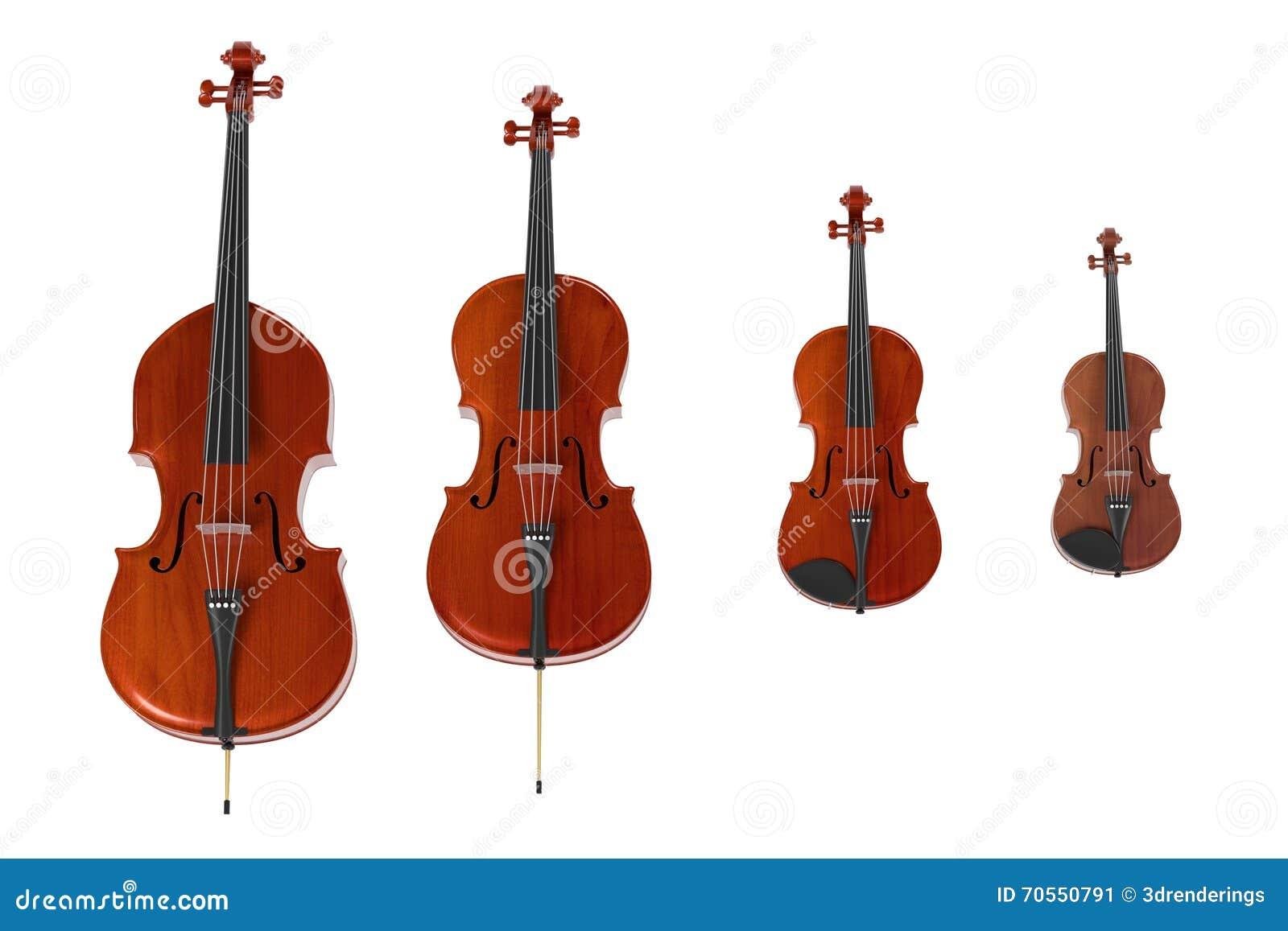 Koord muzikale instrumenten