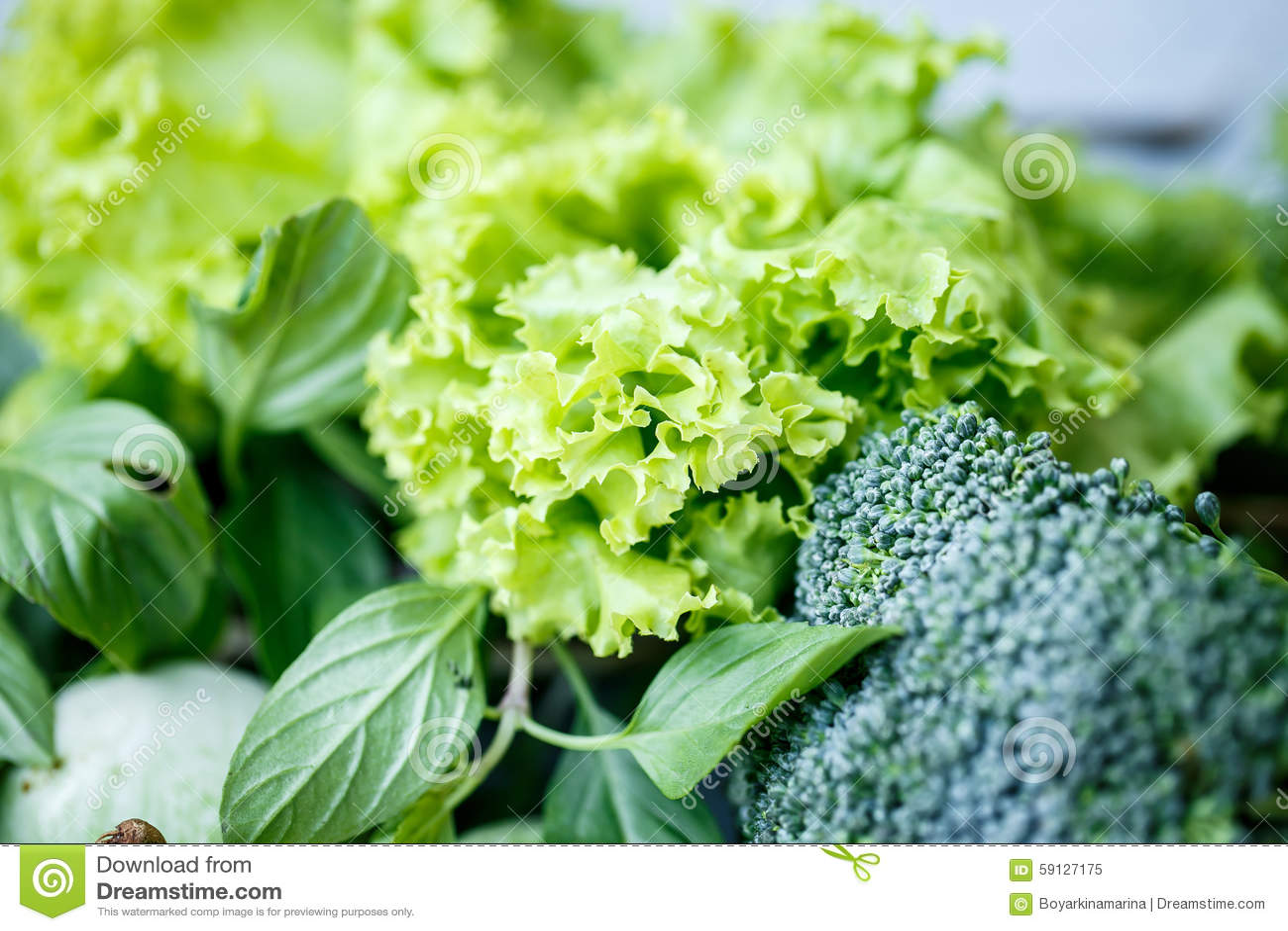 Kopfsalat Brokkoli Und Grüner Salat Stockbild Bild Von Gurke
