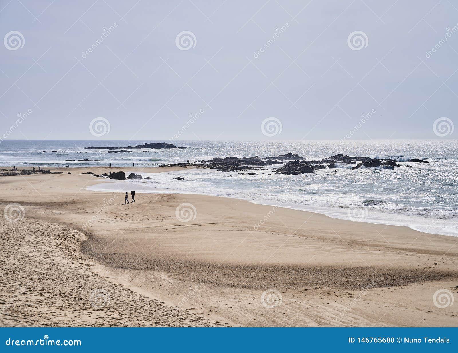 Koppla ihop på stranden nära havet