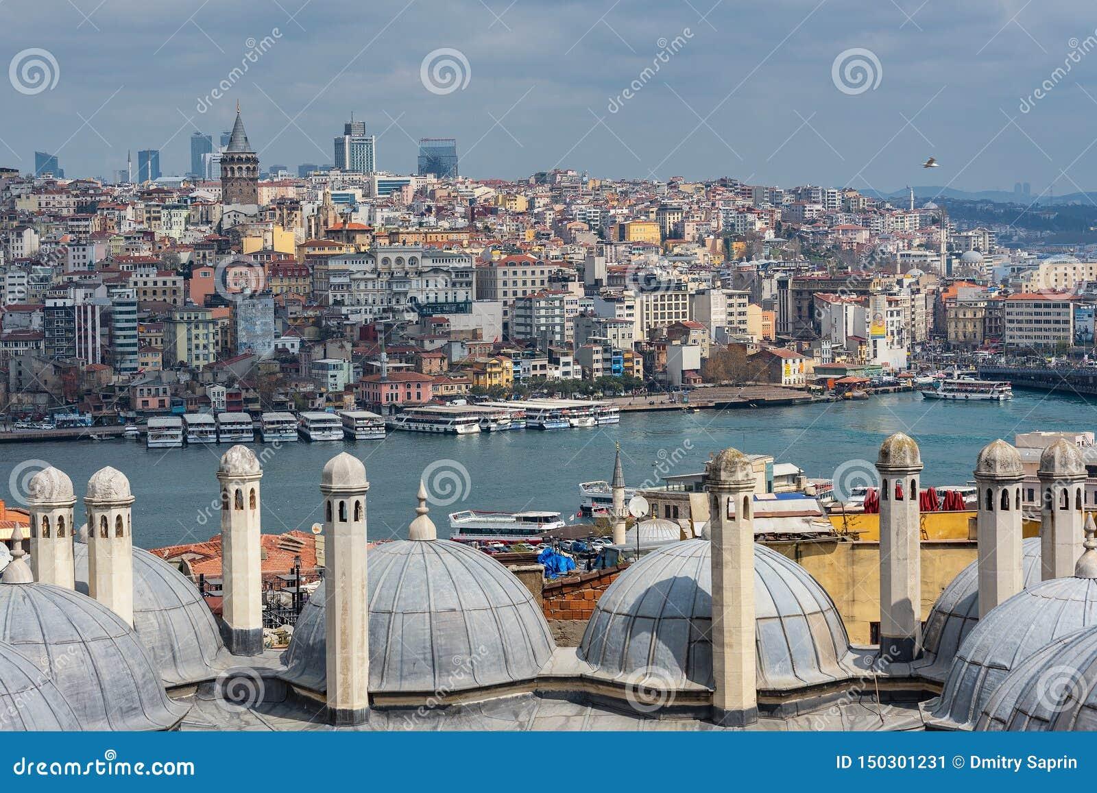Kopuły Suleymaniye meczet, widok Bosphorus cieśnina, budowali Mimar Sinan, Istanbul, Turcja