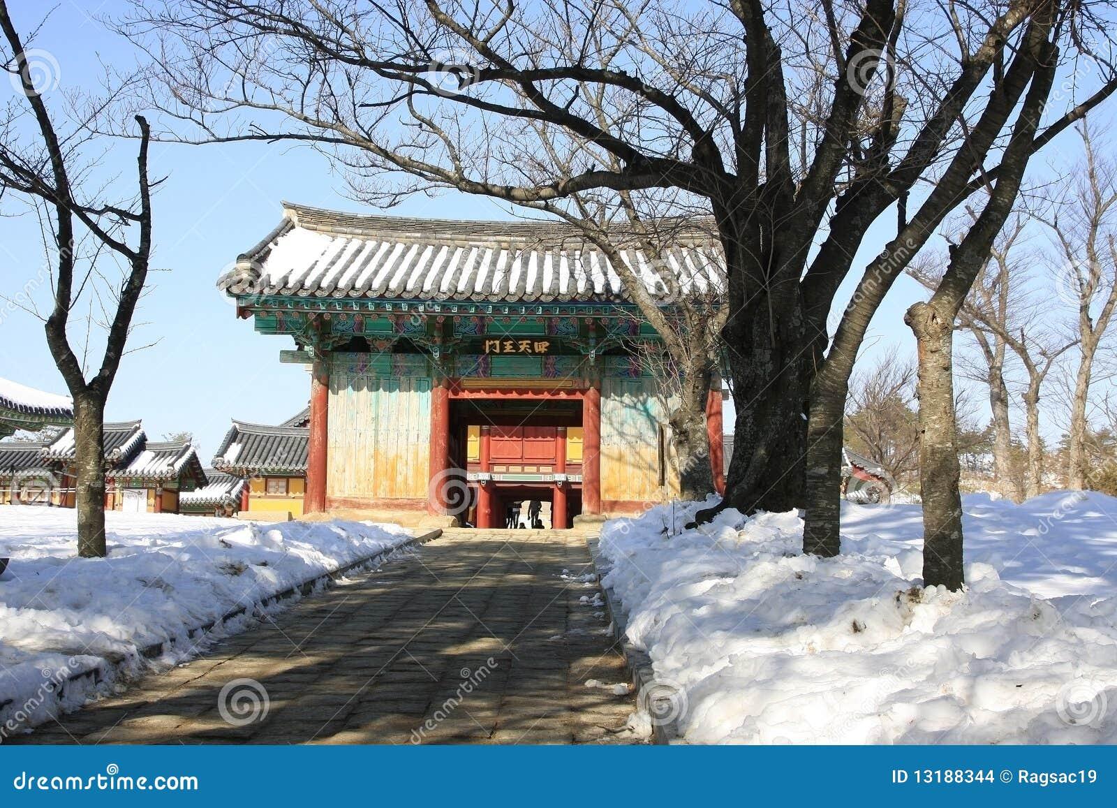 scene korea