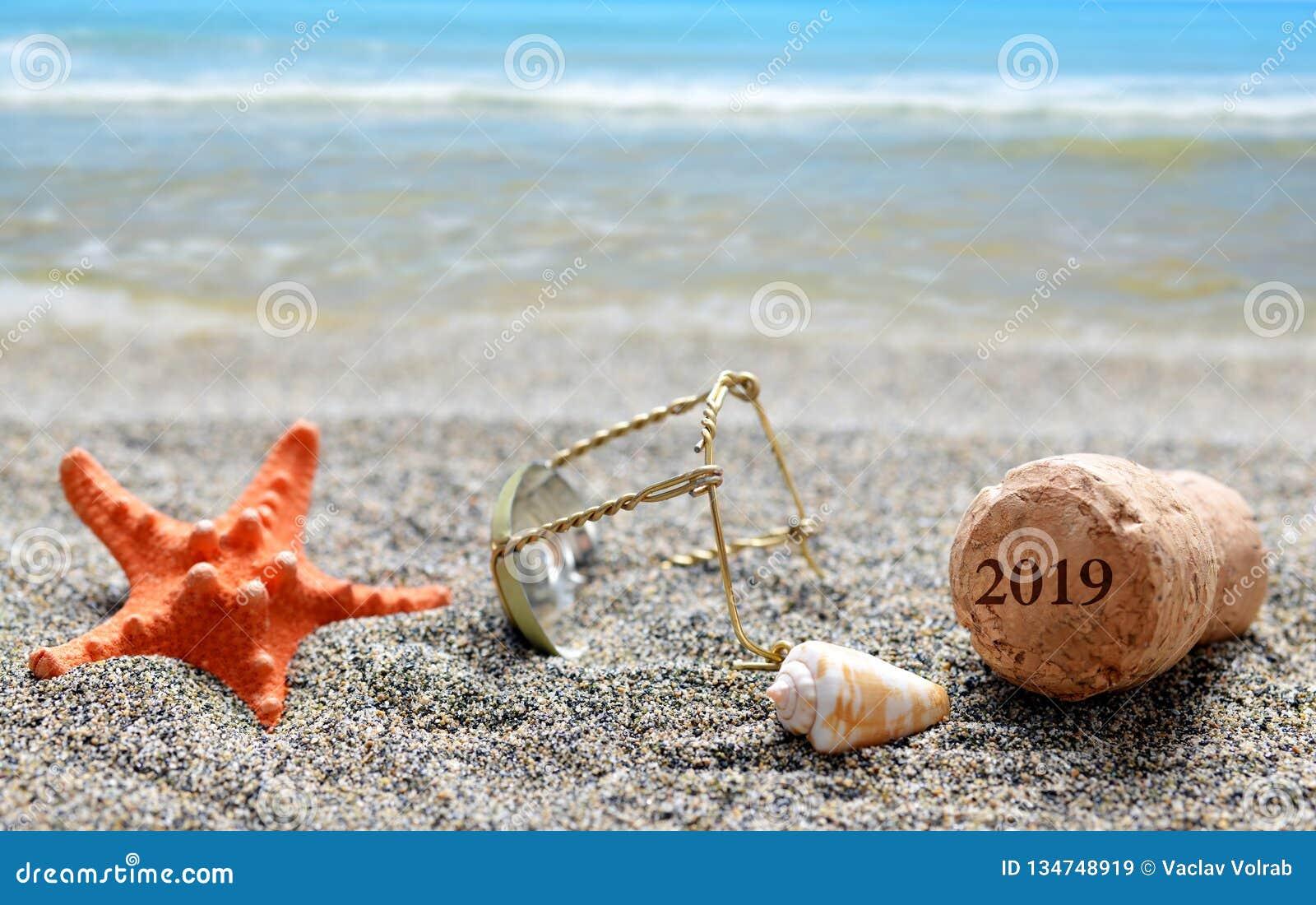 Korkpropp av champagne med numret 2019 och snäckskalet med sjöstjärnan på sandstranden