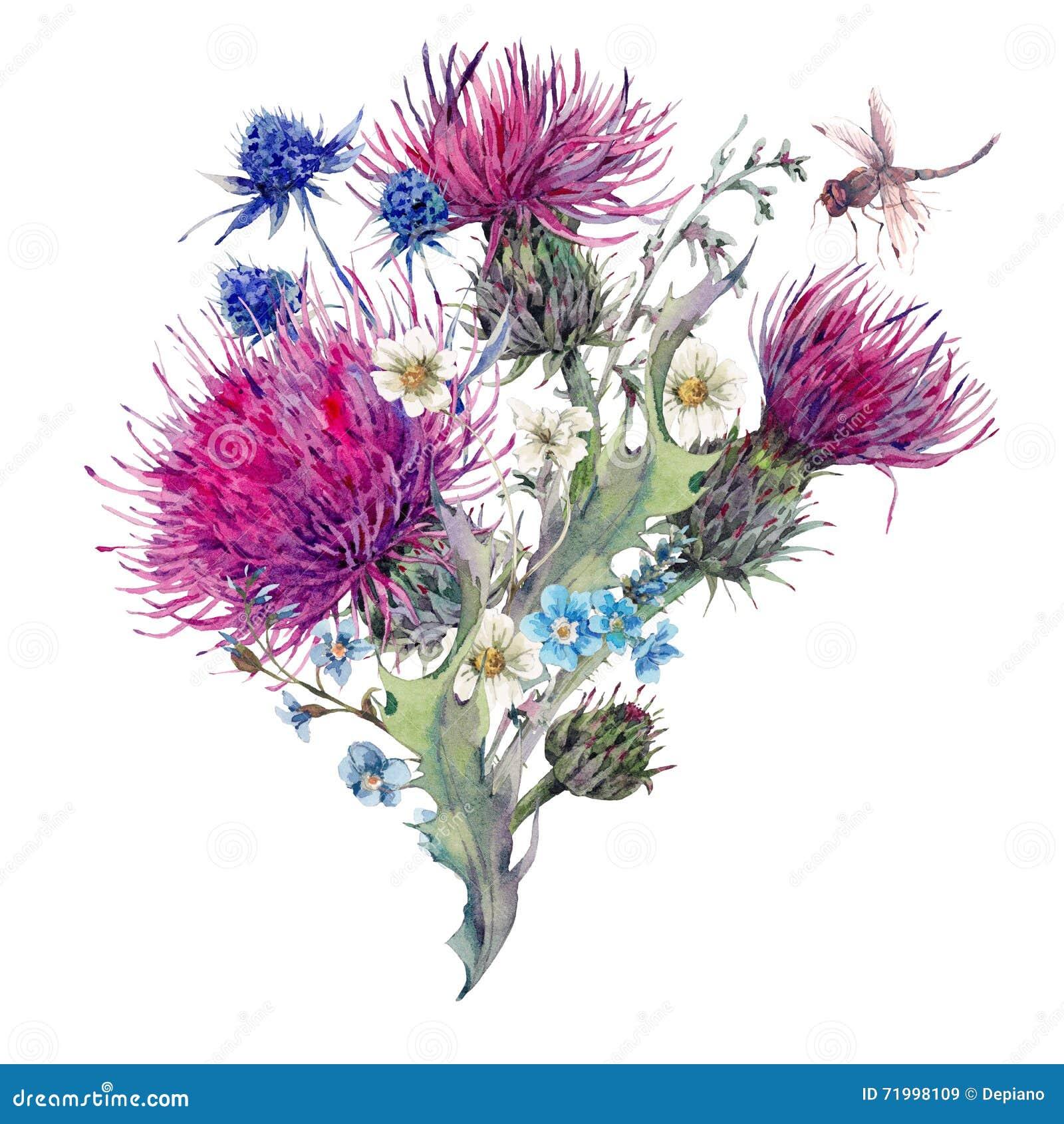 Kort för sommarvattenfärghälsning med lösa blommor, tistlar, dan