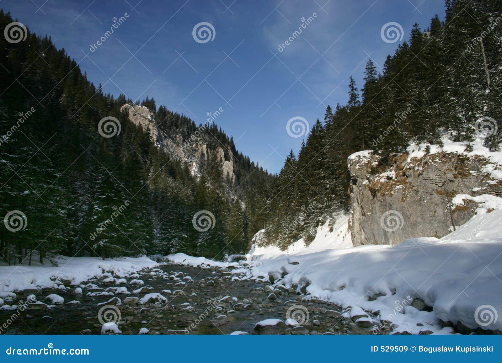 Download Koscieliska tatra谷 库存图片. 图片 包括有 冬天, 蓝色, 小河, 天空, 森林, 石头 - 529509