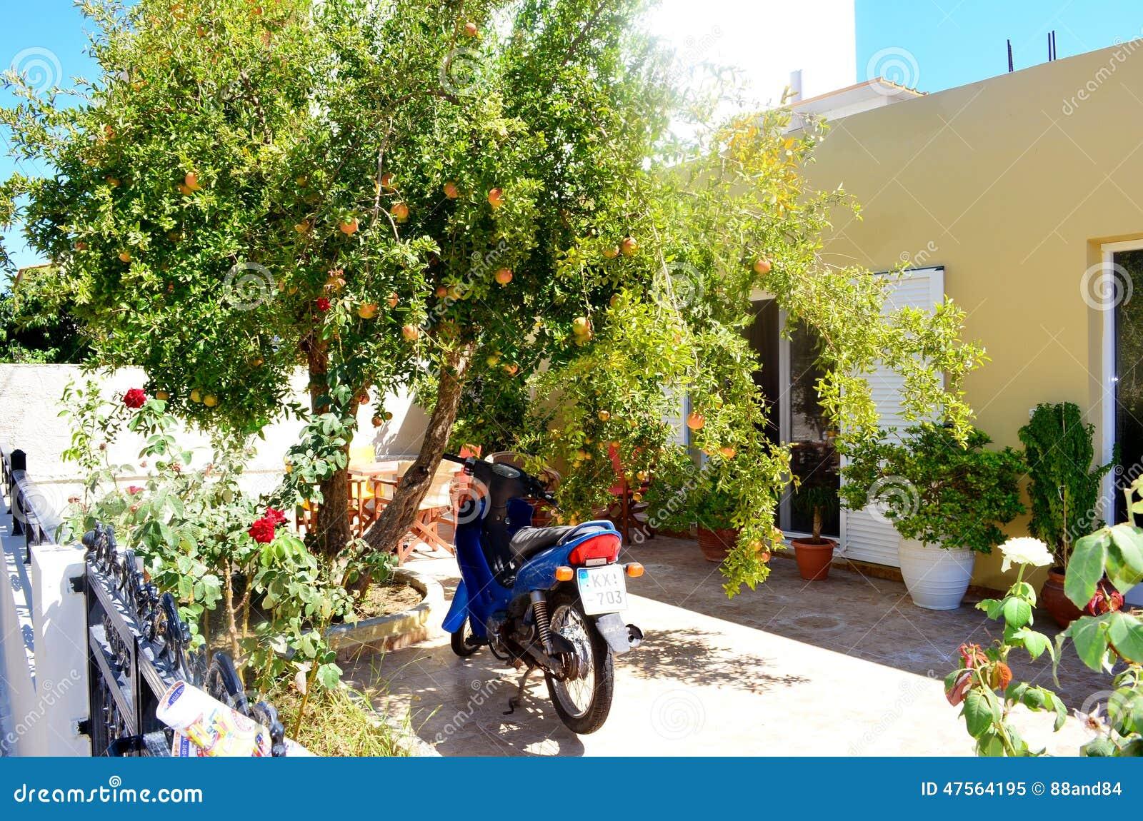 Koseiland, Griekenland Typische Griekse Werf Van Een Huis Met ...