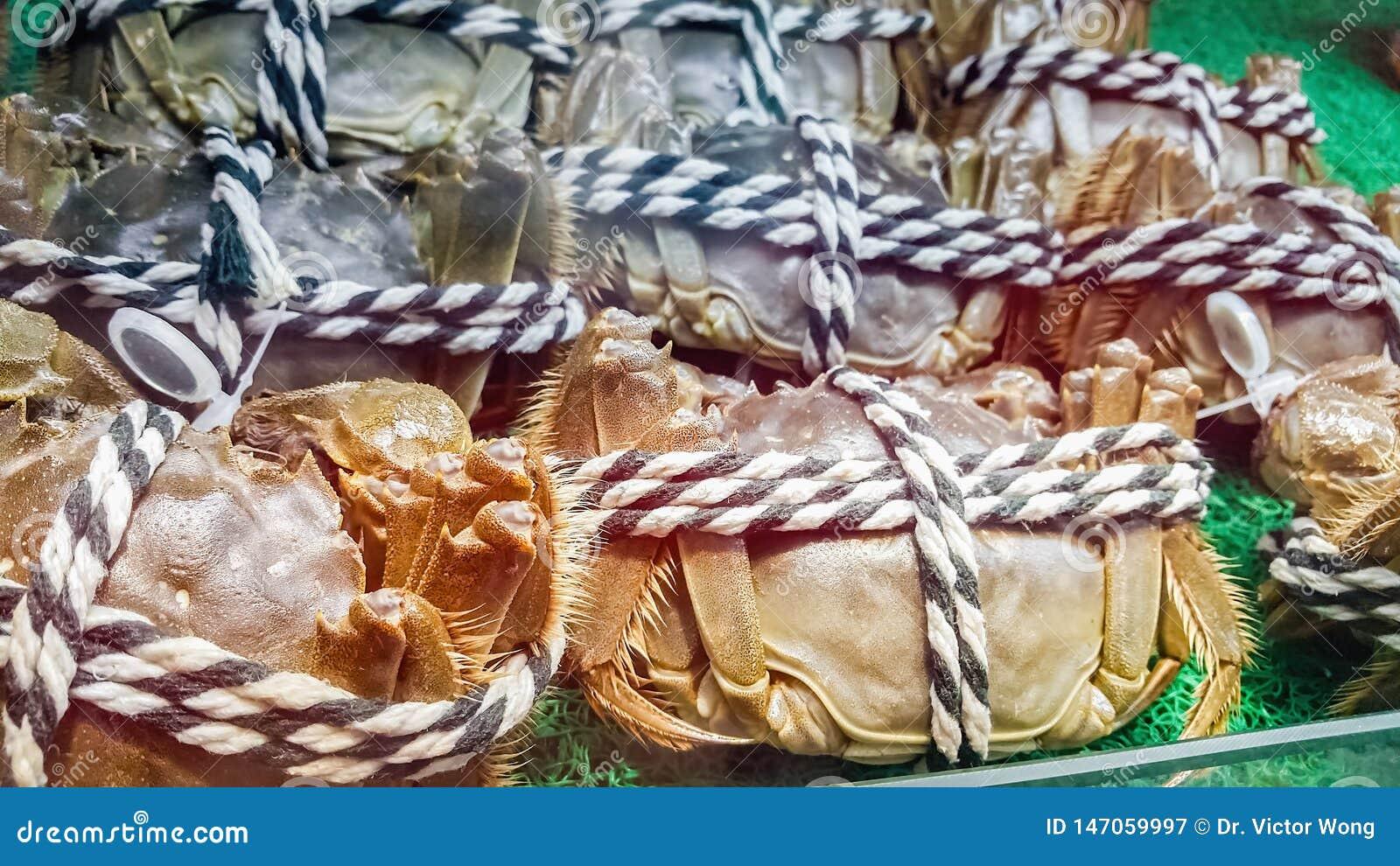 Kosmaci kraby dla sprzedaży