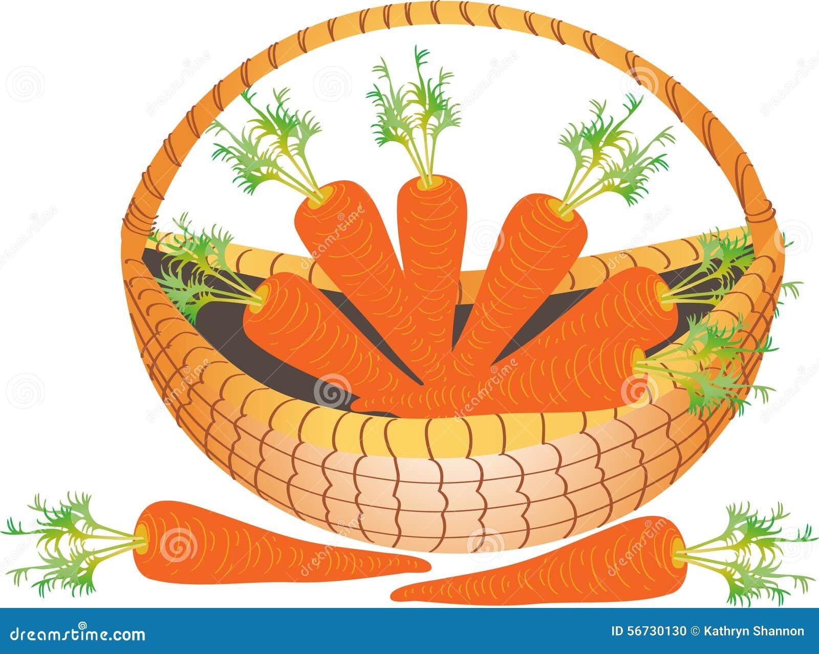 Kosz marchewki