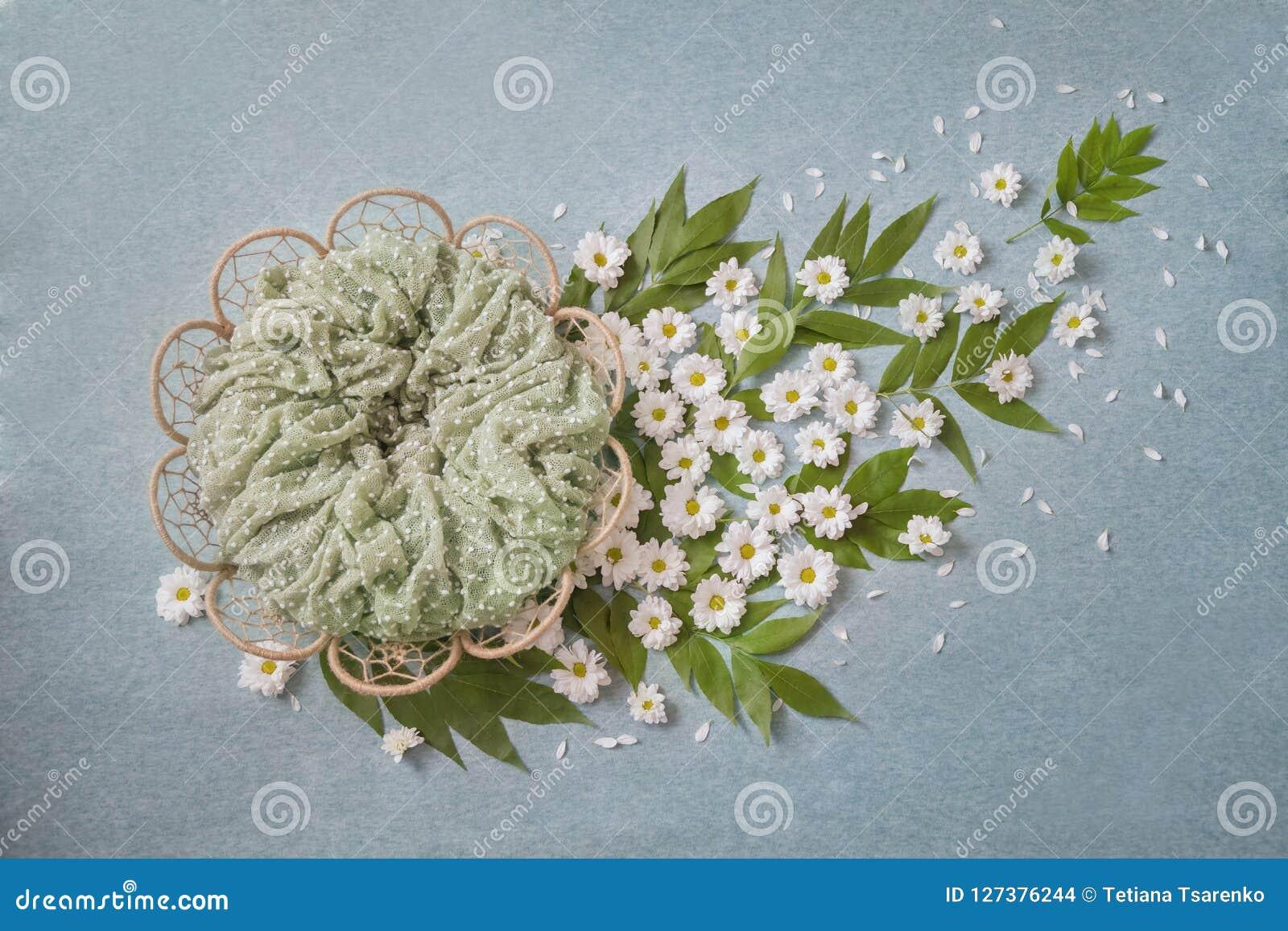 Kosz w postaci kwiatu, białe stokrotki trenuje z zielonymi liśćmi, turkusowy tło