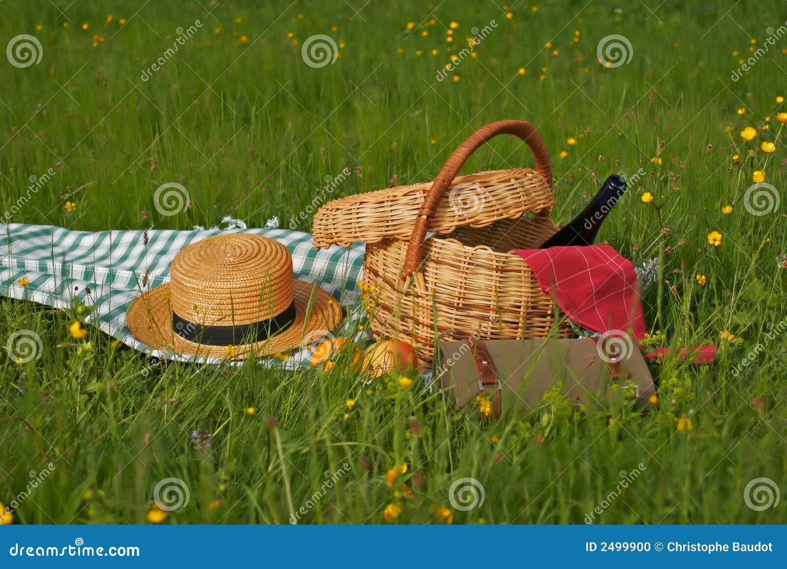 Koszykowy piknik
