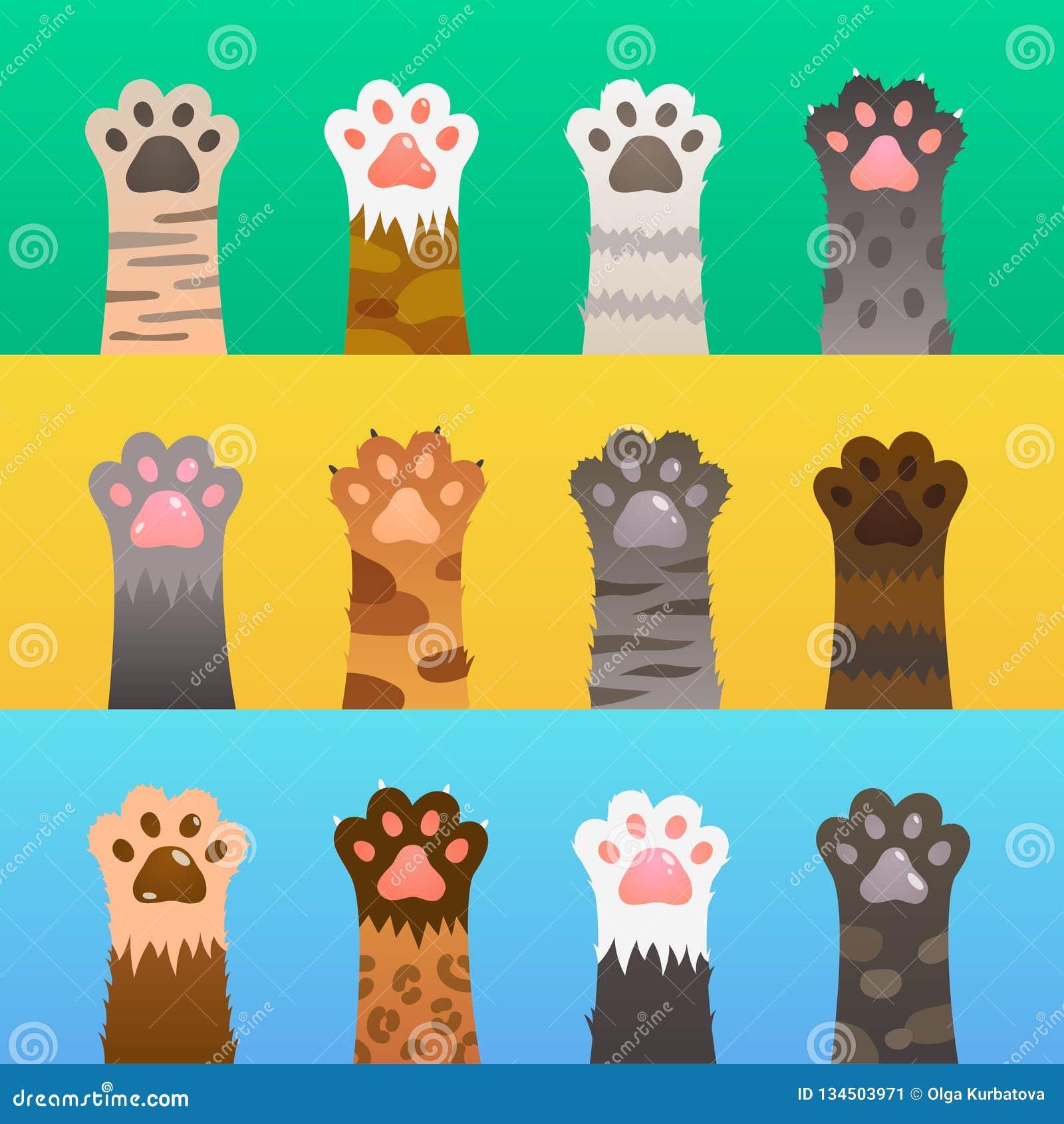 Kot łapy mieszkanie Kot łapy drapają rękę, kreskówki śliczny zwierzę, futerkowy śmieszny dziki myśliwy Figlarki przyjaźni wektoru