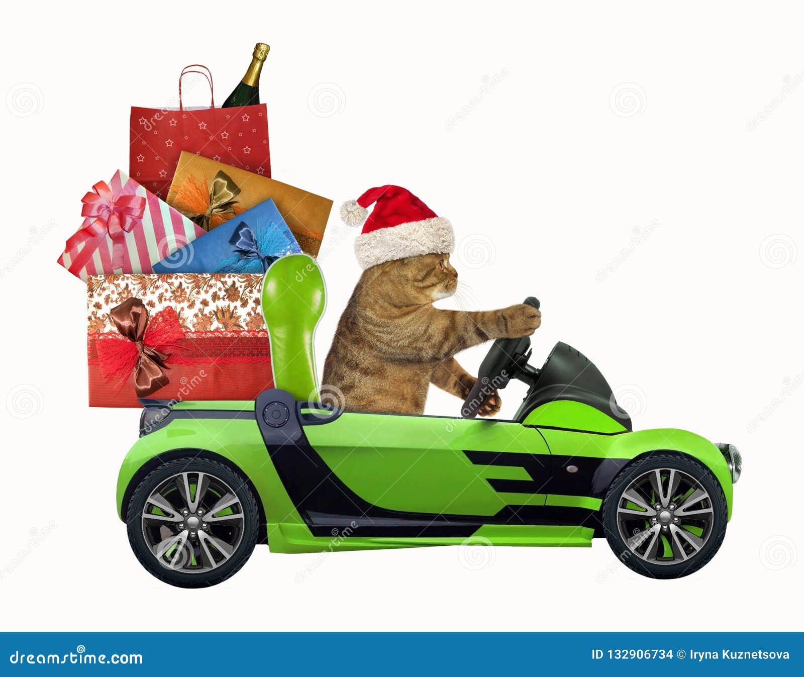 Kot jedzie samochód z Bożenarodzeniowymi zabawkami