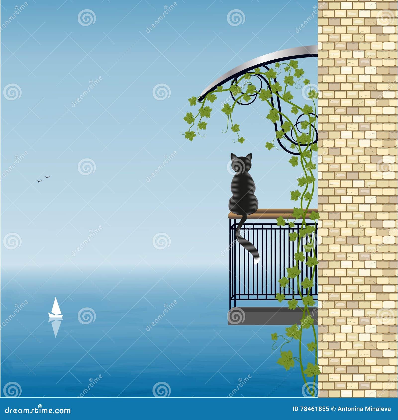 Kot na balkonie