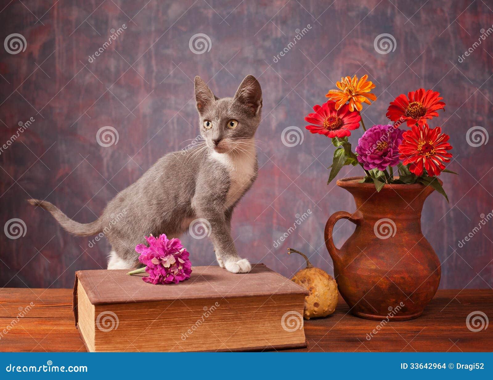 Kot pozuje obok kwiatów